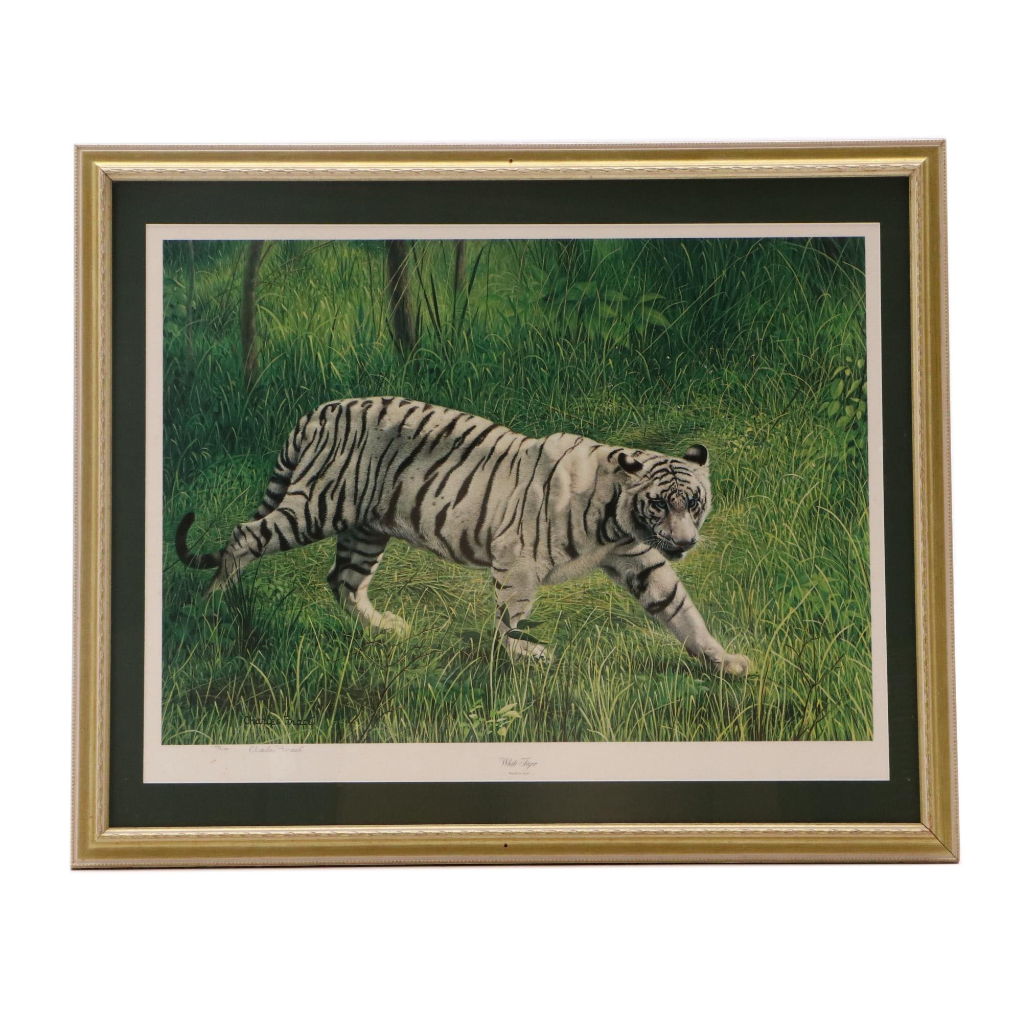 """Charles Fracé Limited Edition Offset Lithograph """"White Tiger"""""""