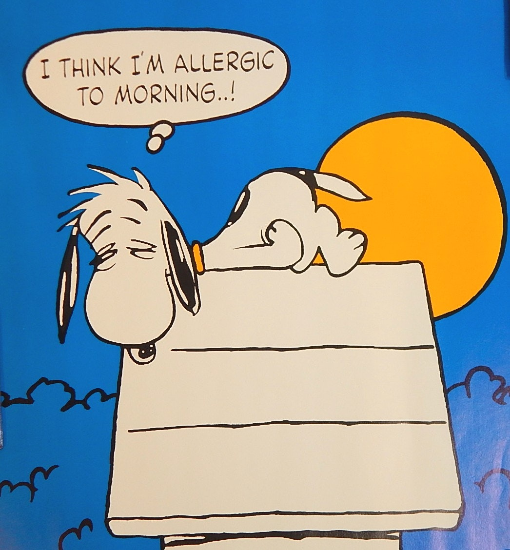 "1958 United Feature Syndicate Snoopy 20"" x 28"" Poster"