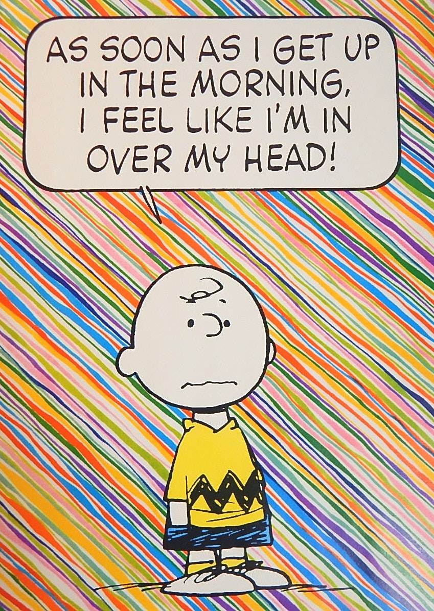 "Vintage United Feature Syndicate Charlie Brown 20"" x 28"" Poster"