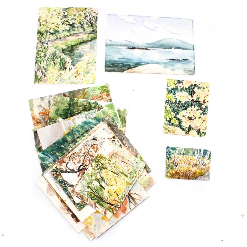 June Carver Roberts Portfolio of Landscape Works