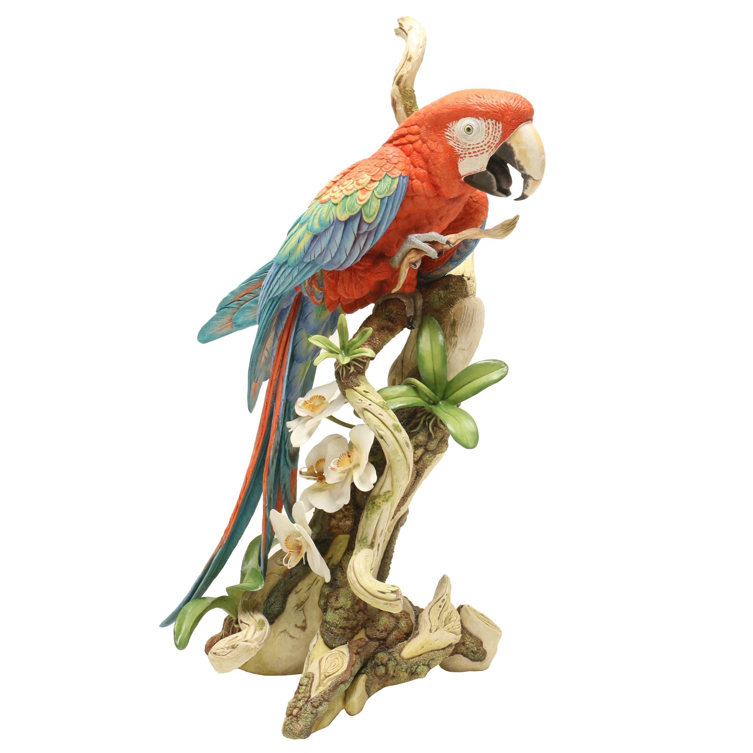 David Fryer Studios Large Ceramic Macaw Sculpture