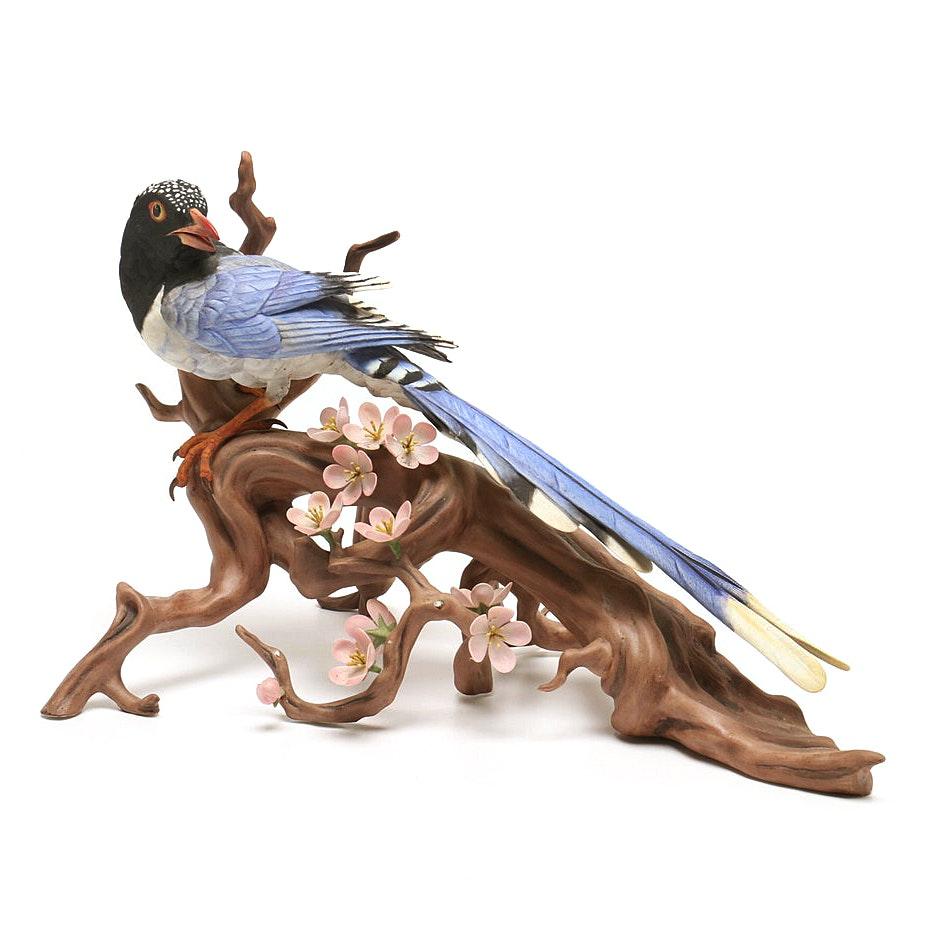 "Boehm Limited Edition ""Red Billed Blue Magpie"" Porcelain Sculpture"