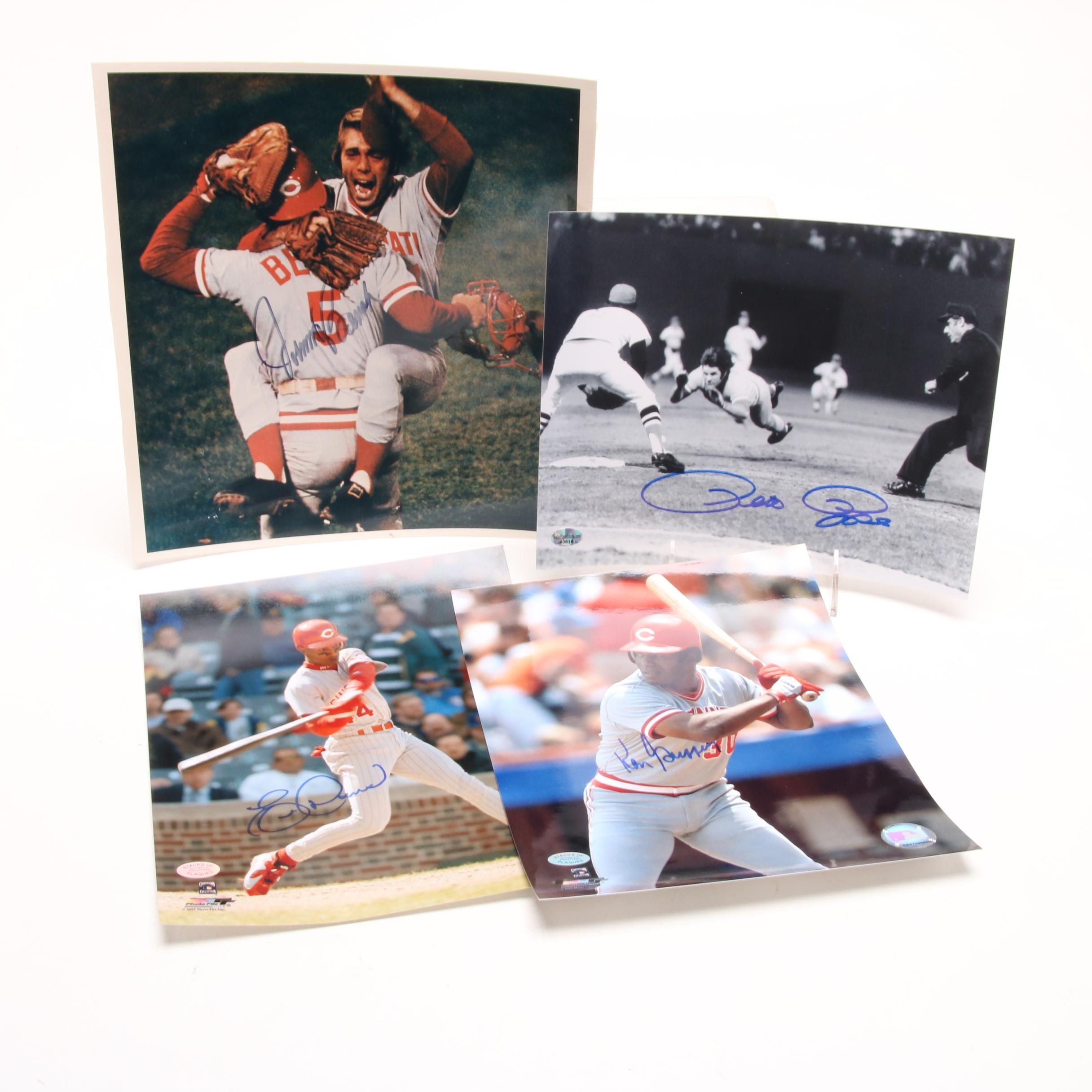 Four Signed Reds Photos   COAs