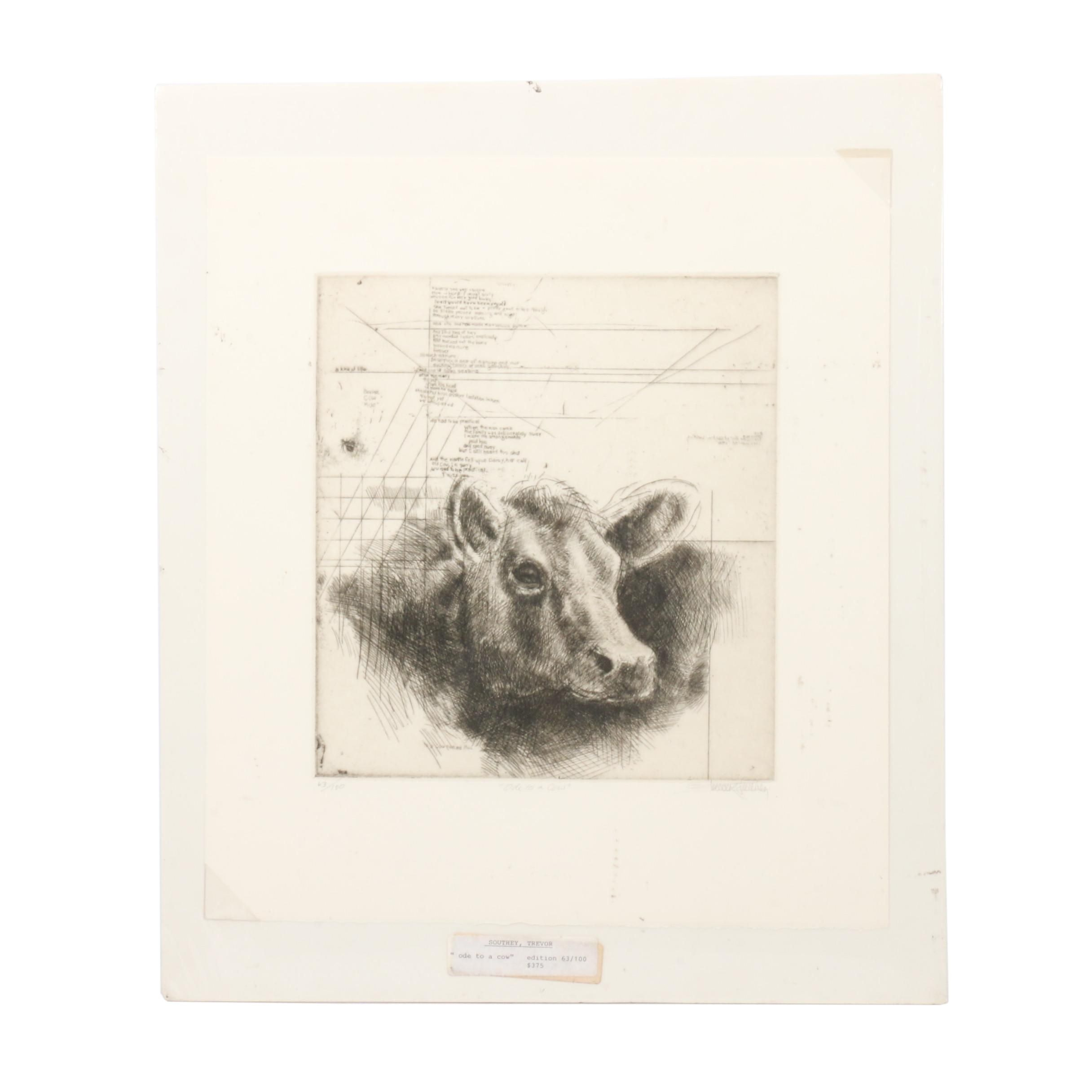 "Trevor Southey Limited Edition etching ""Ode to a Cow"""