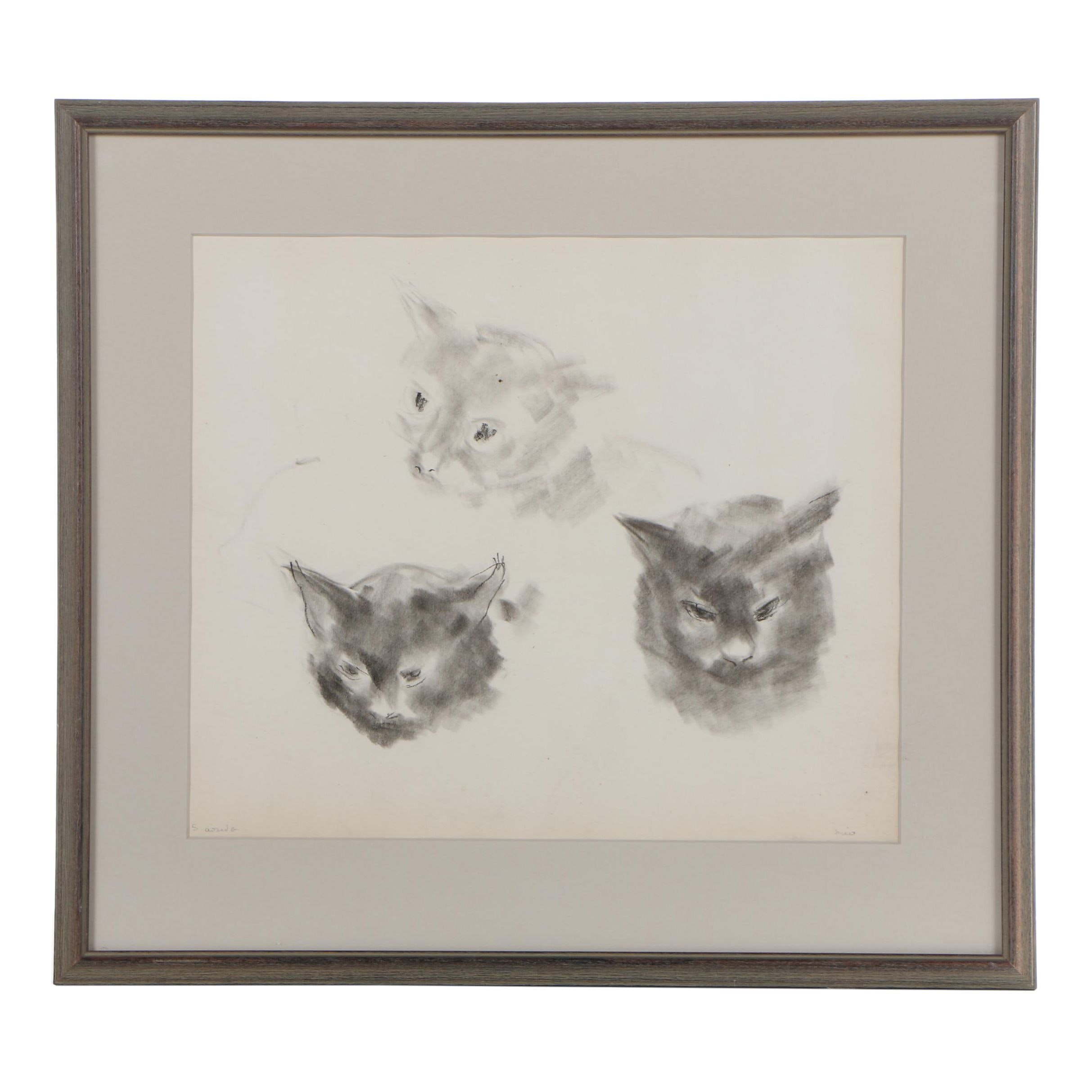 Feline Charcoal Drawings