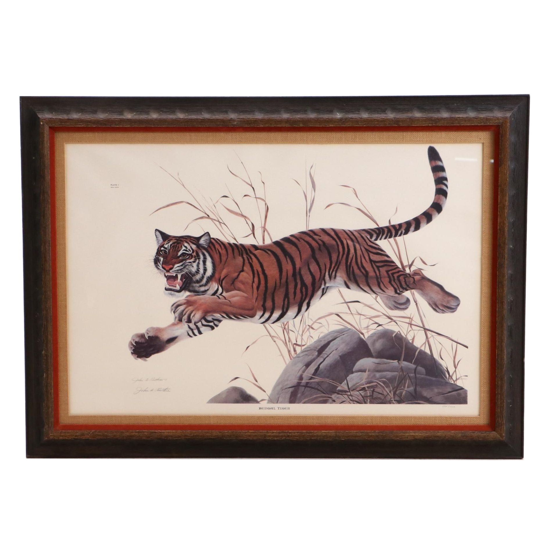 """John Ruthven Limited Edition Offset Lithograph """"Bengal Tiger"""""""