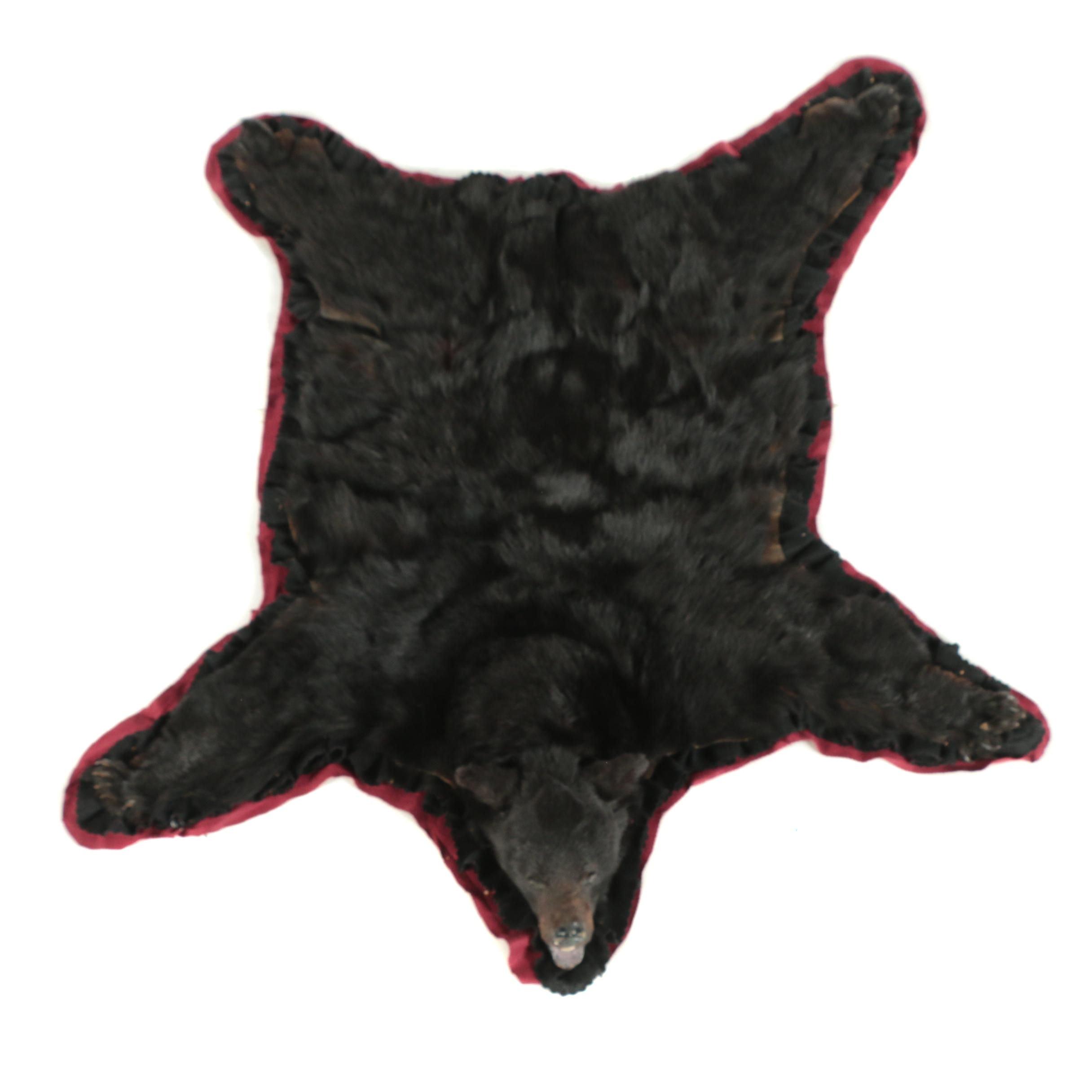 American Black Bear Full Body Pelt with Felt Backing