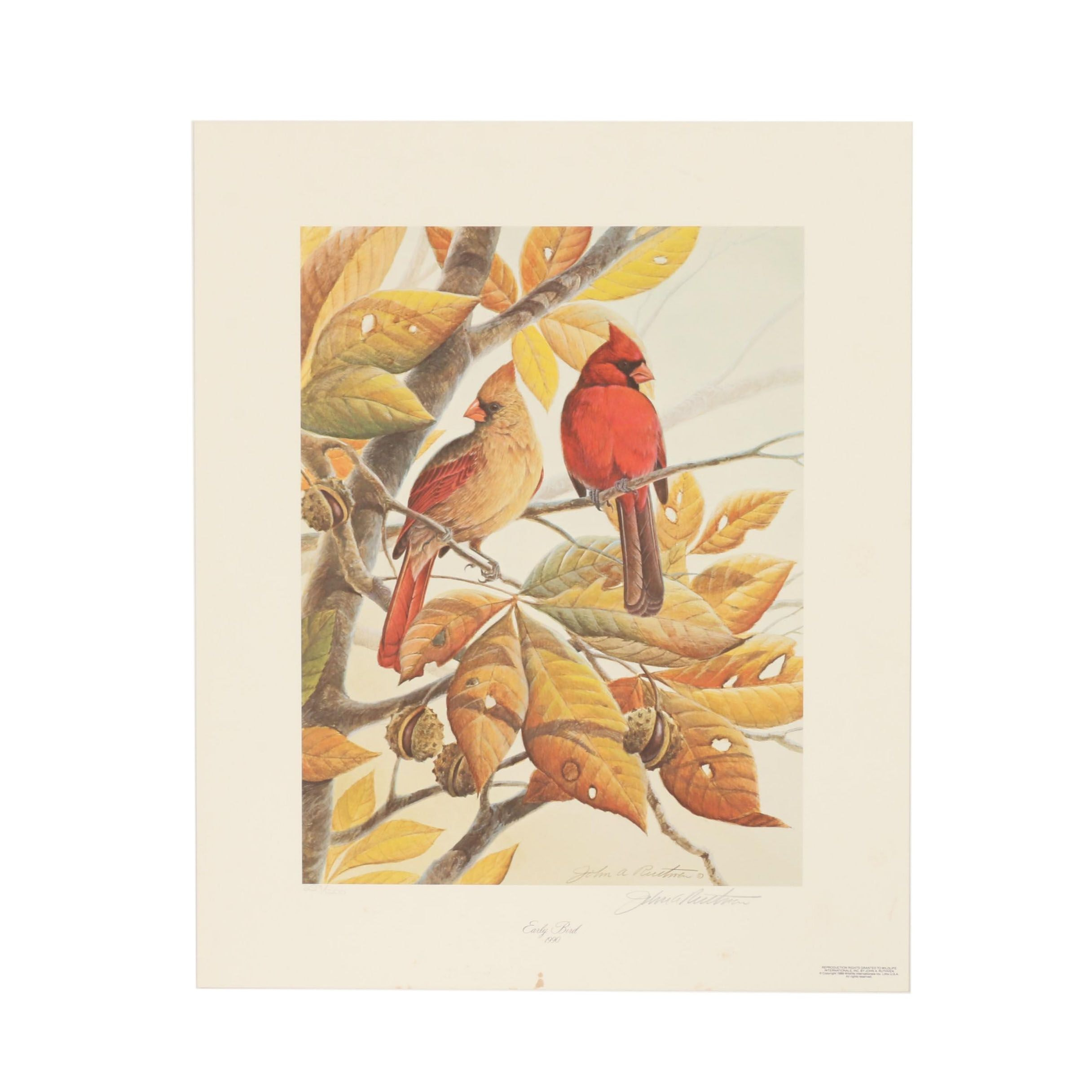 """John Ruthven Limited Edition Offset Lithograph """"Early Bird 1990"""""""