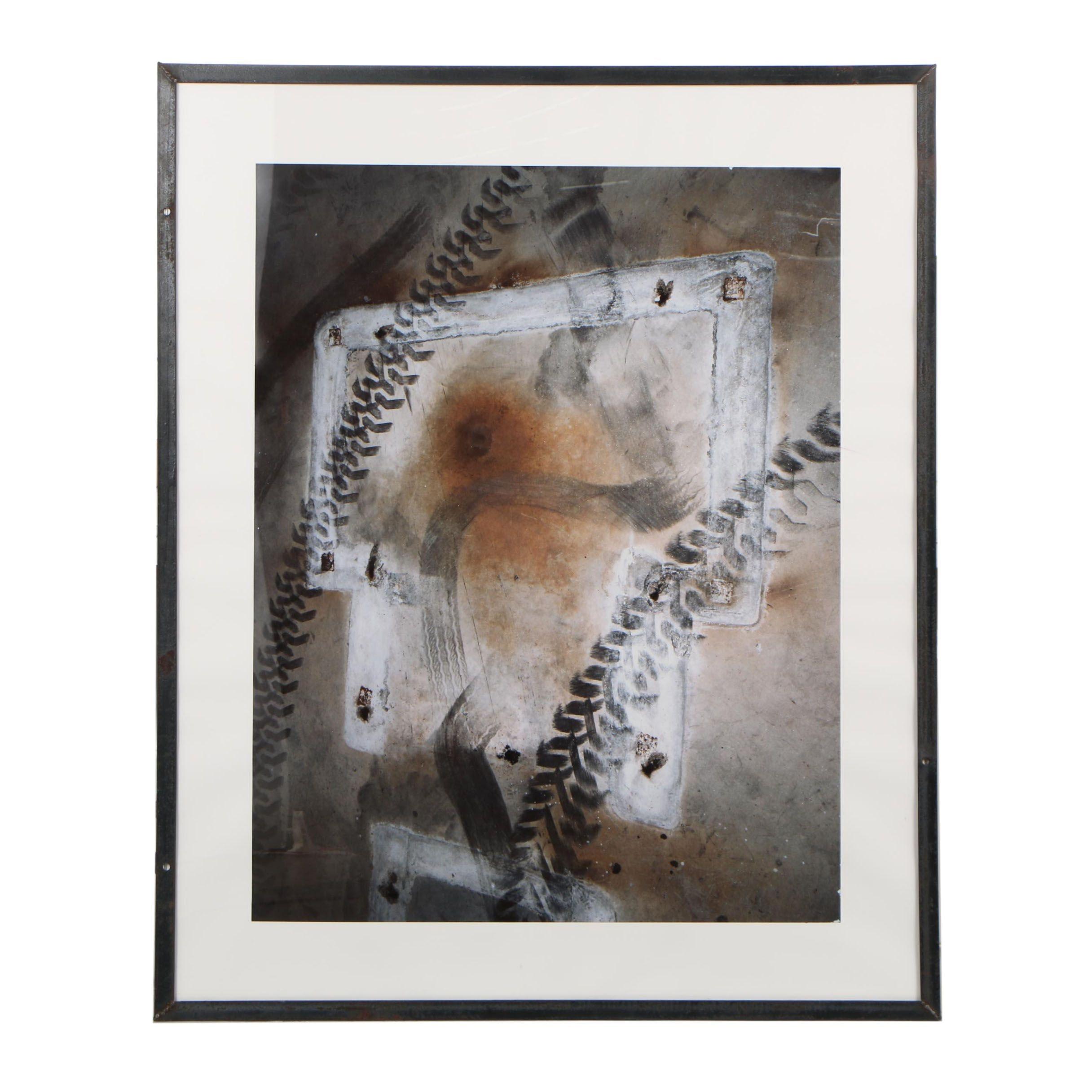 "John Huggins 1993 Cibachrome Photograph ""Decomposition #9"""
