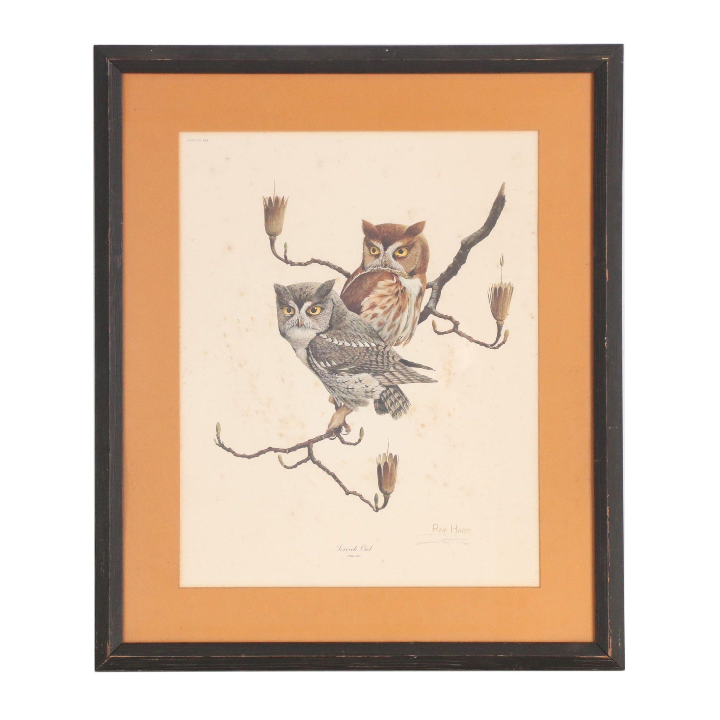 "Ray Harm Offset Lithograph ""Screech Owl"""