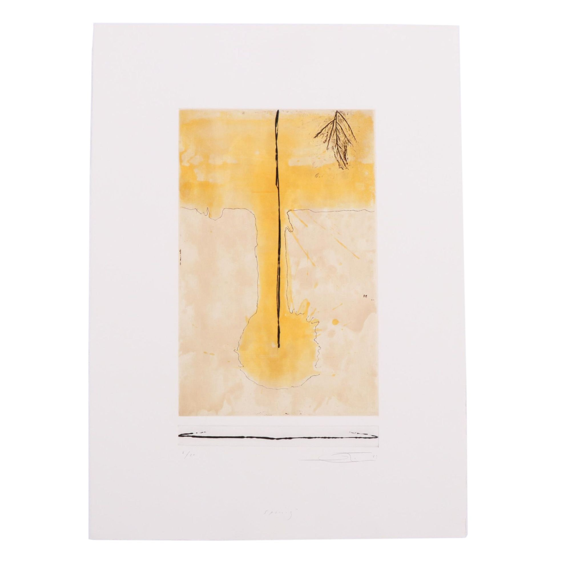 """Shōichi Ida Limited Edition Etching """"Spring"""" from Suite """"Four Seasons"""""""