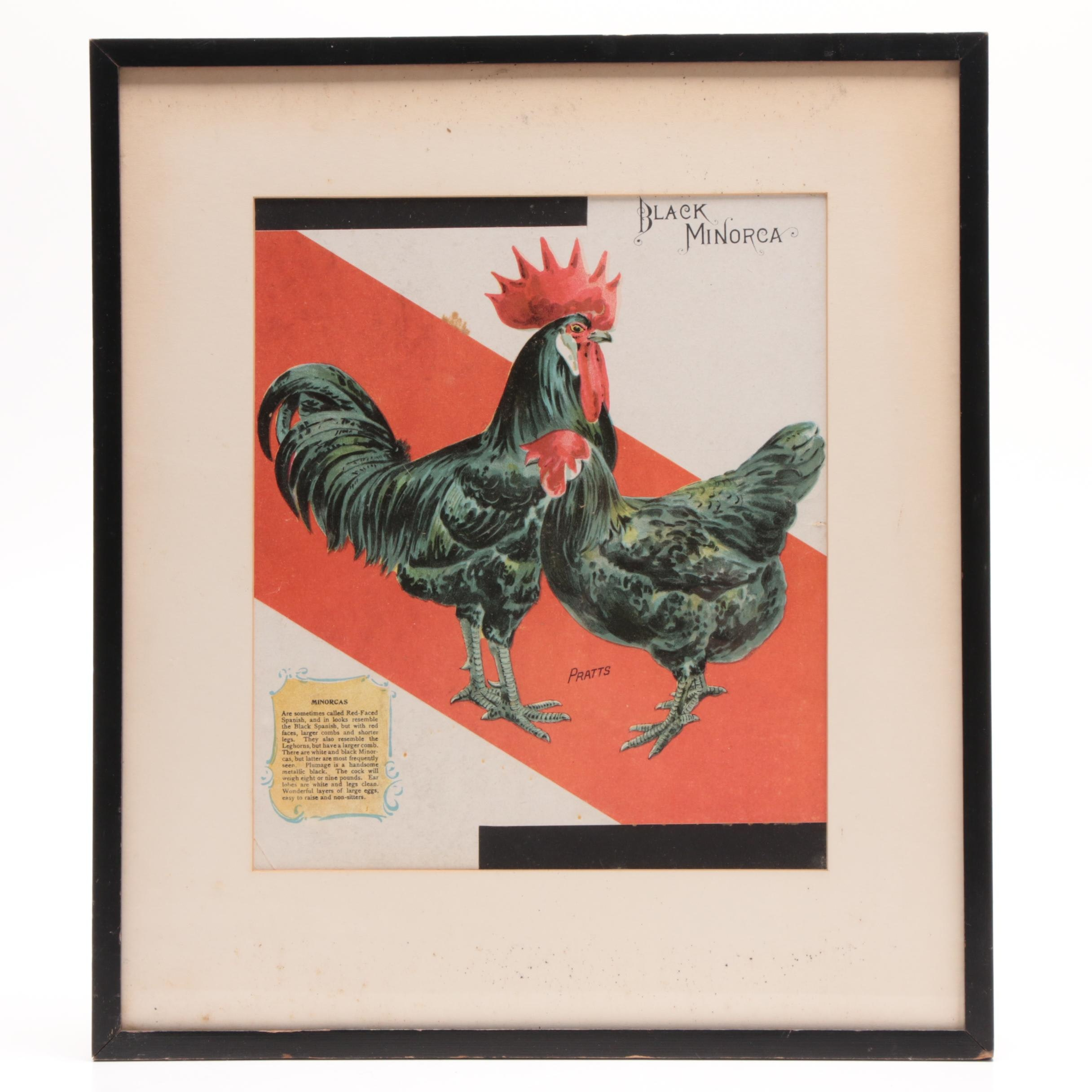 Antique Chromolithograph Advertising Poster for Pratts Poultry Food