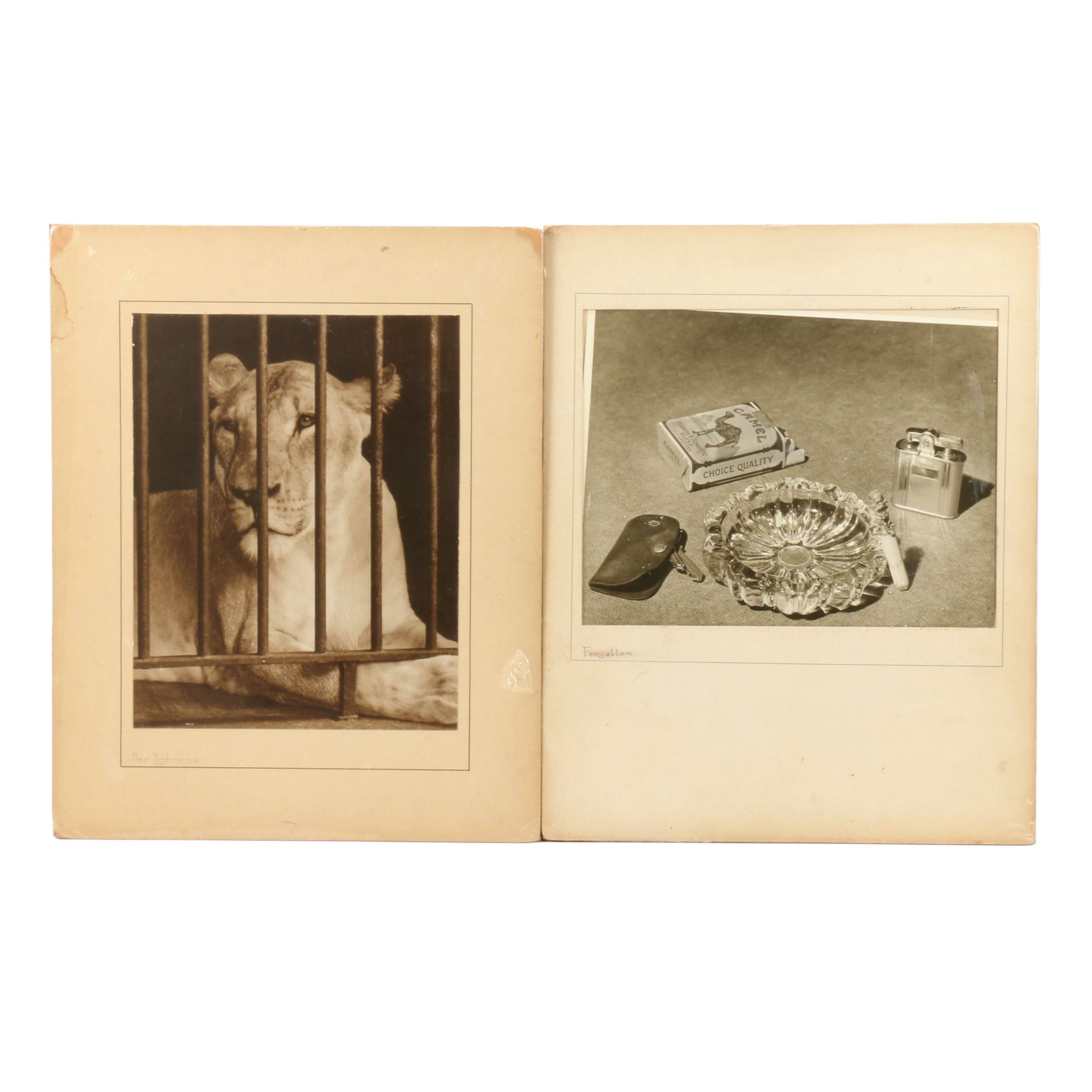 "Mid 20th Century Photographic Prints ""Forgotten"" and ""Her Highness"""