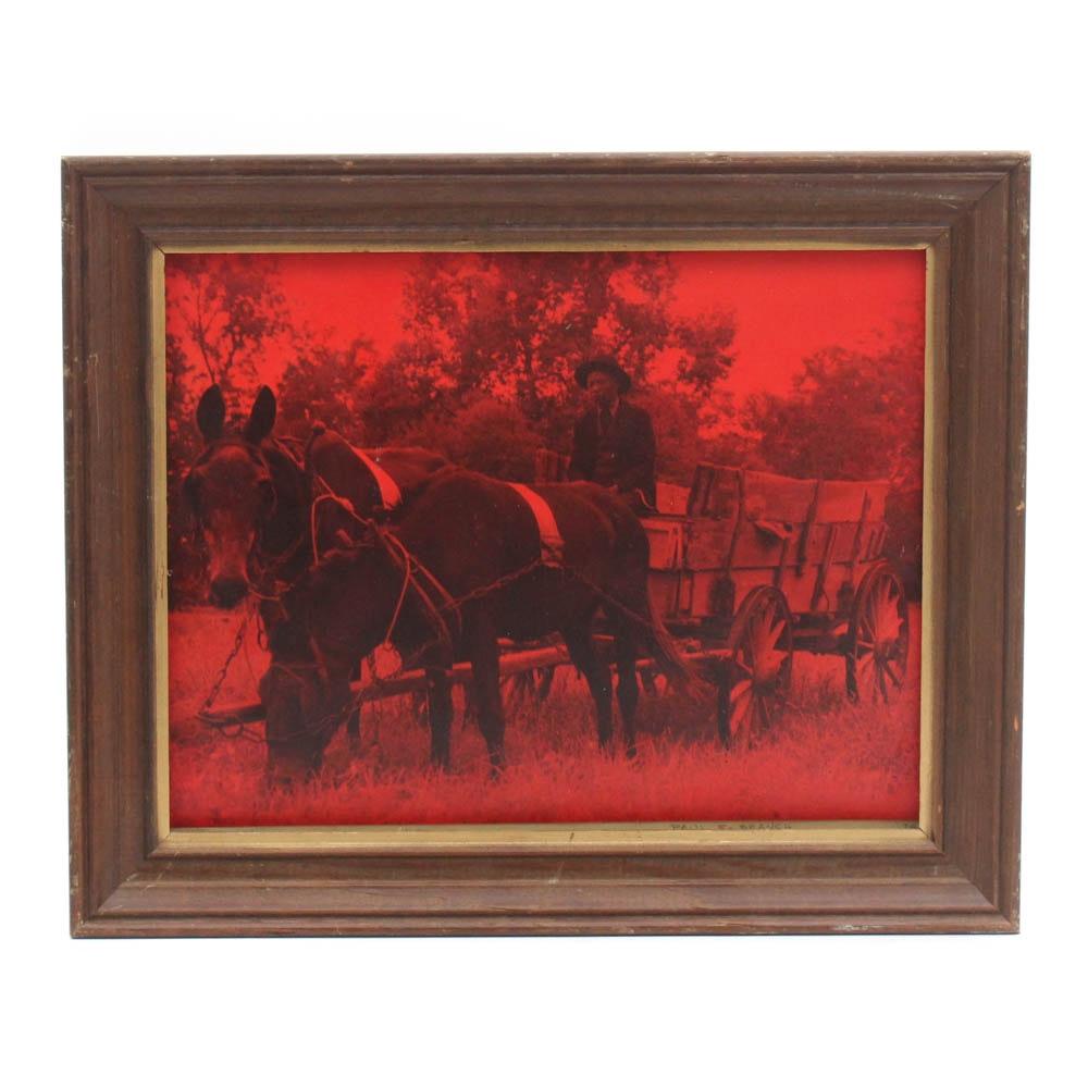 "Paul E. Branch ""Summertime - Red"" Photograph"
