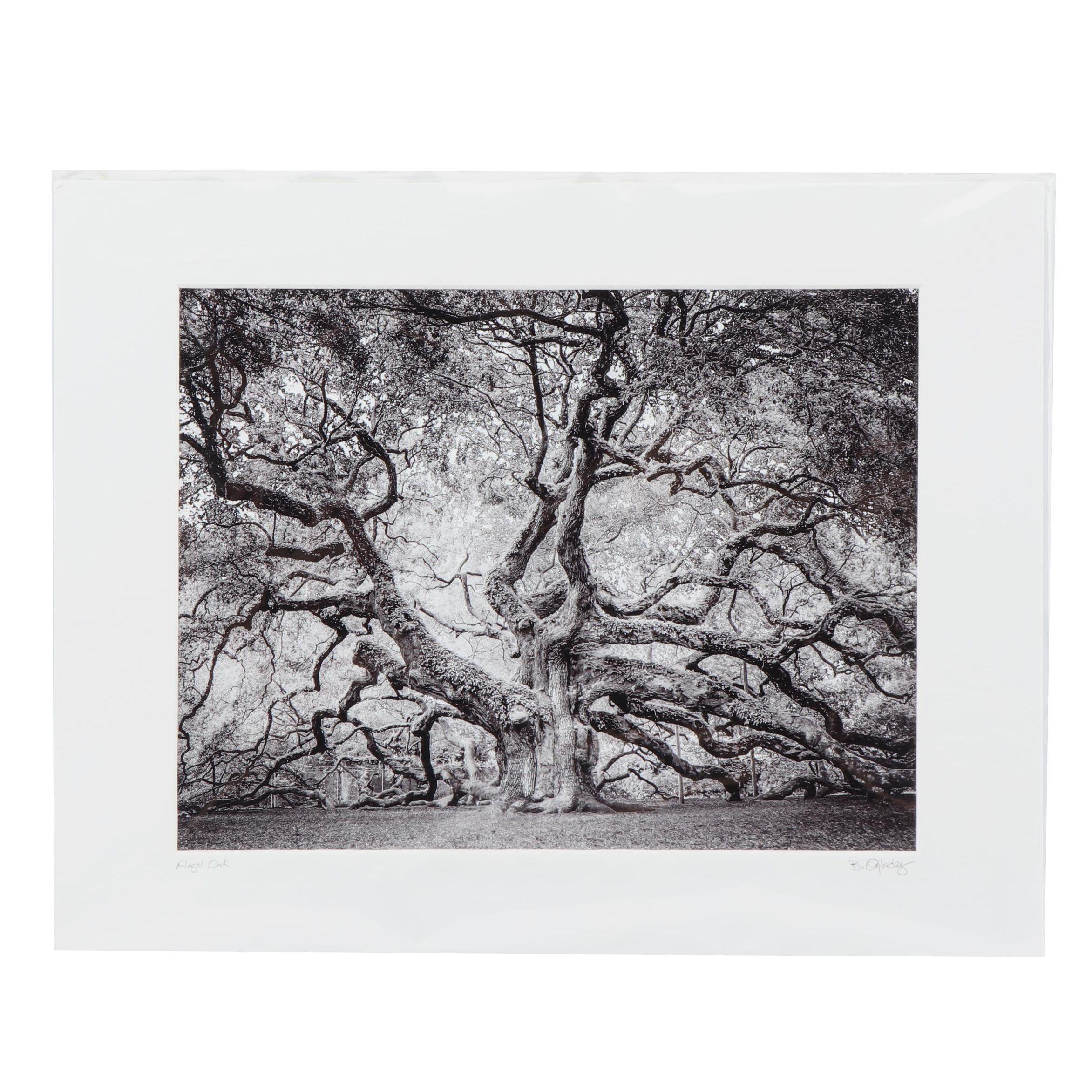 """Butch Oglesby Photograph """"Angel Oak"""""""