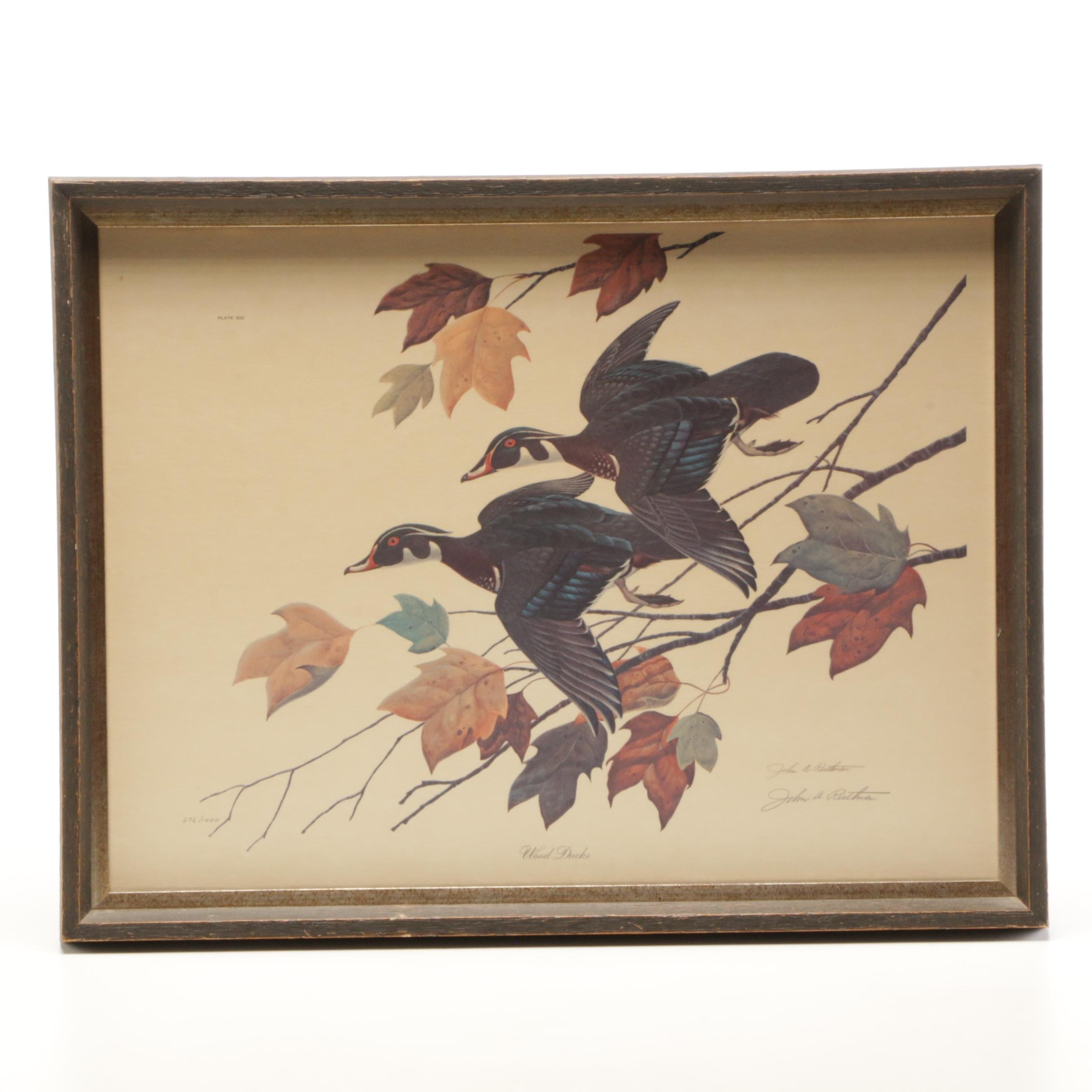 "John Ruthven Limited Edition Offset Lithograph ""Wood Ducks"""