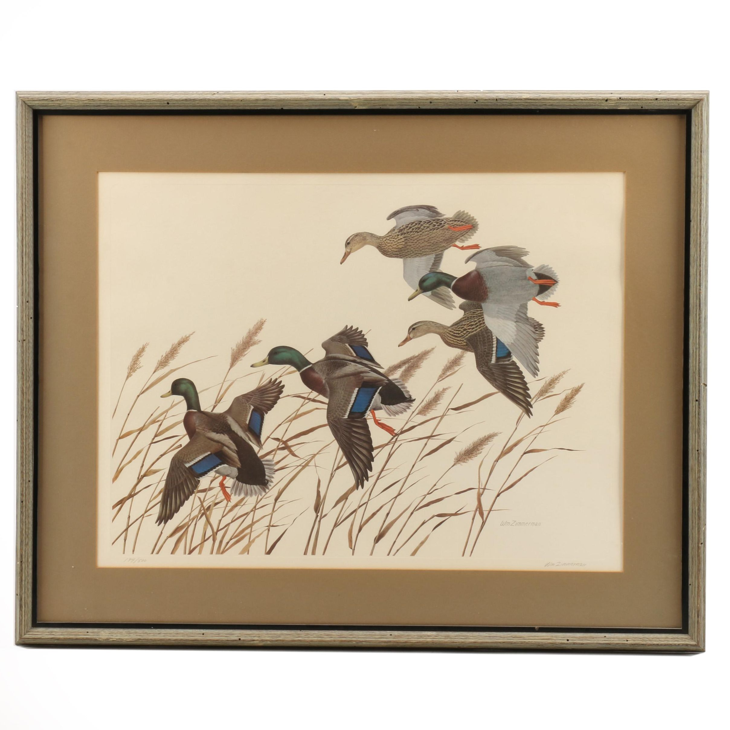 William Zimmerman Limited Edition Offset Lithograph of Ducks in Flight