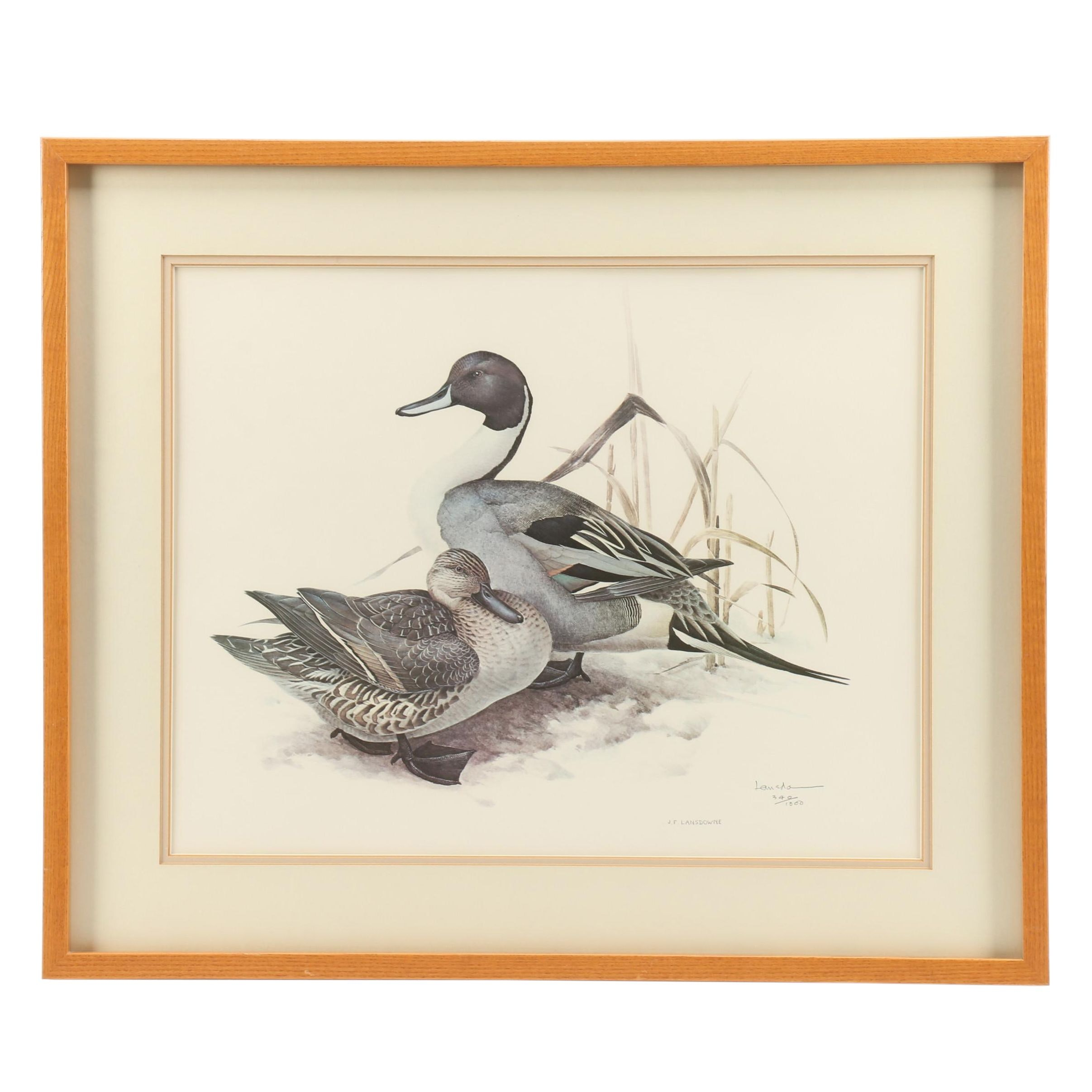 James F. Lansdowne Limited Edition Offset Lithograph of Ducks