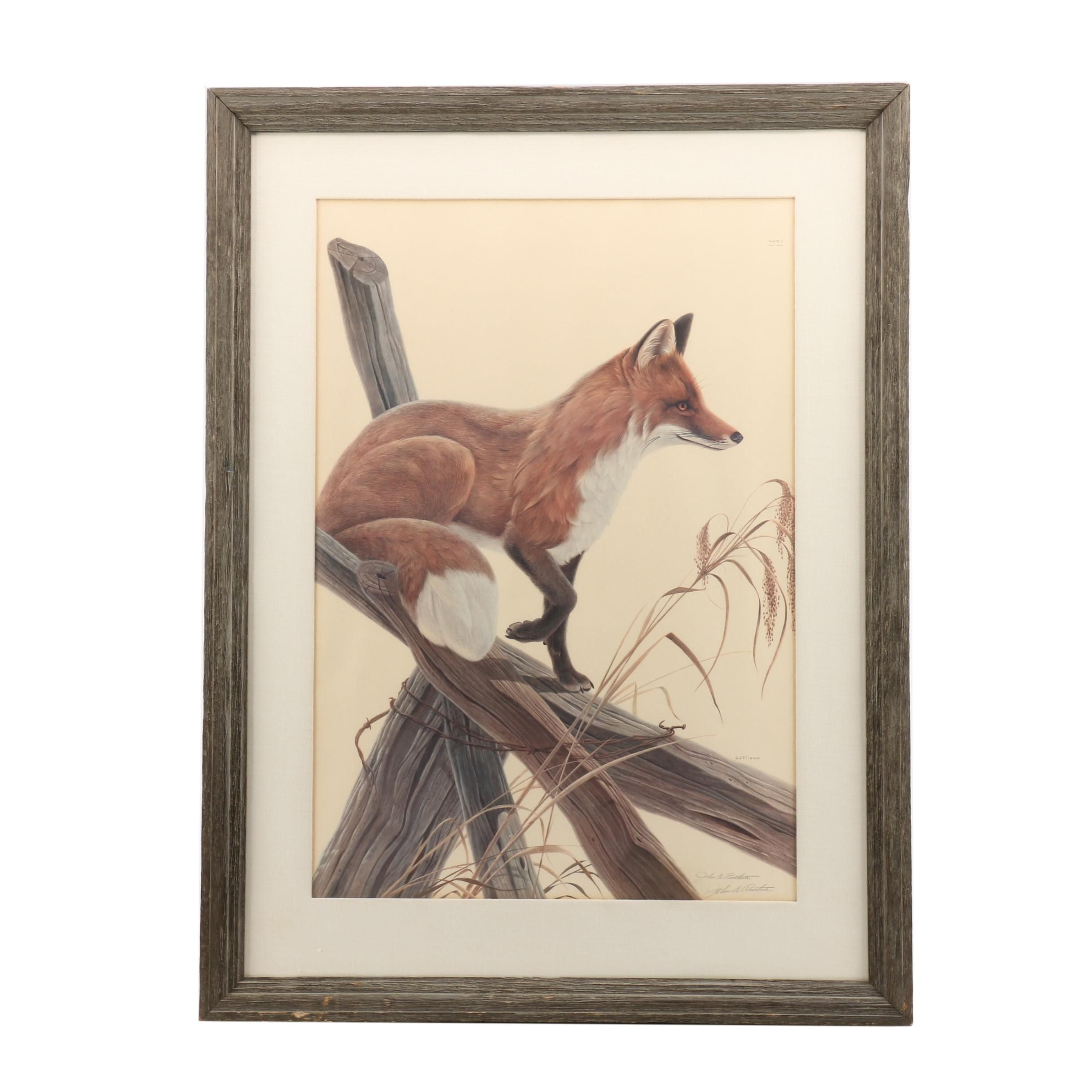 """John Ruthven Limited Edition Offset Lithograph """"Red Fox"""""""