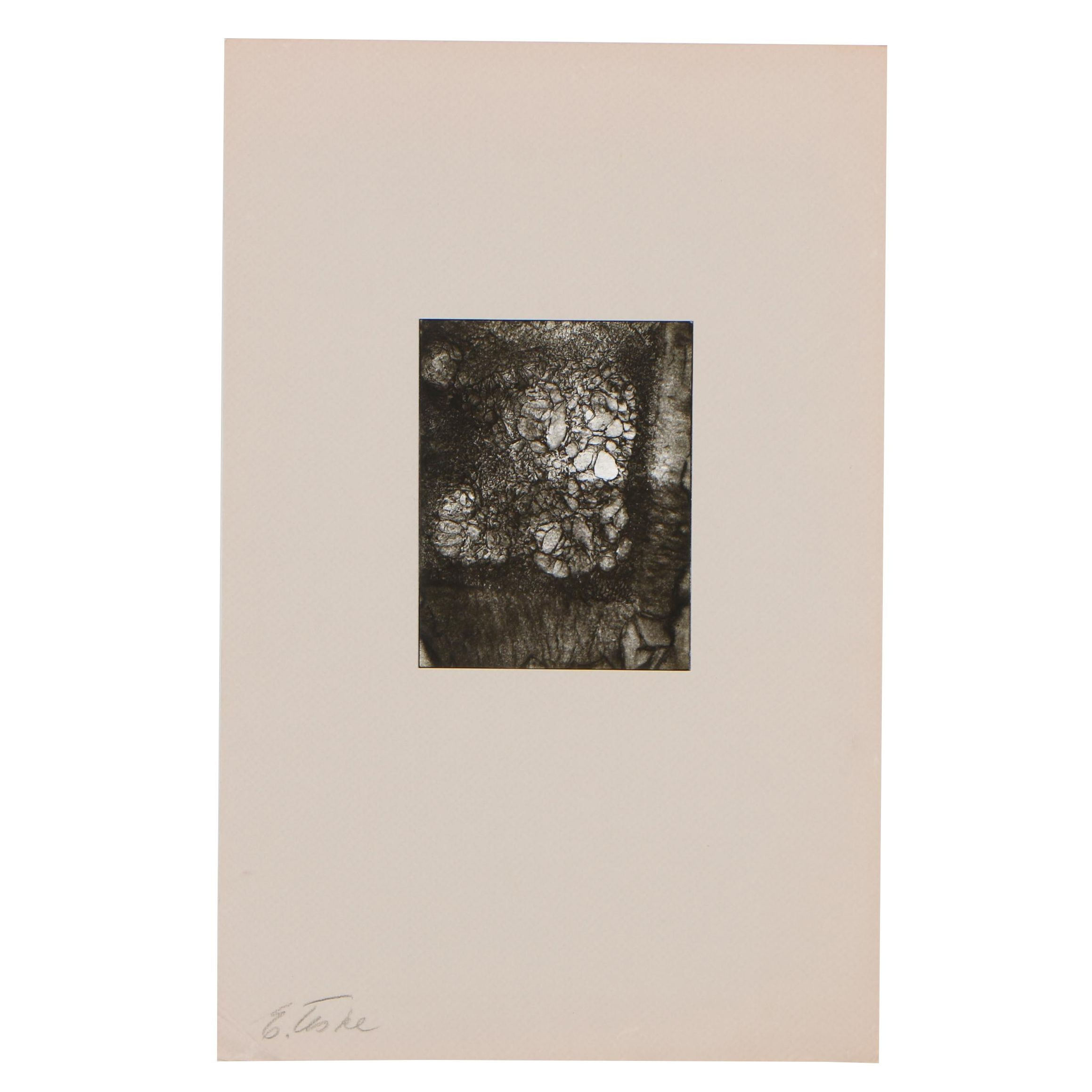Edmund Teske Gelatin Silver Abstract Photograph