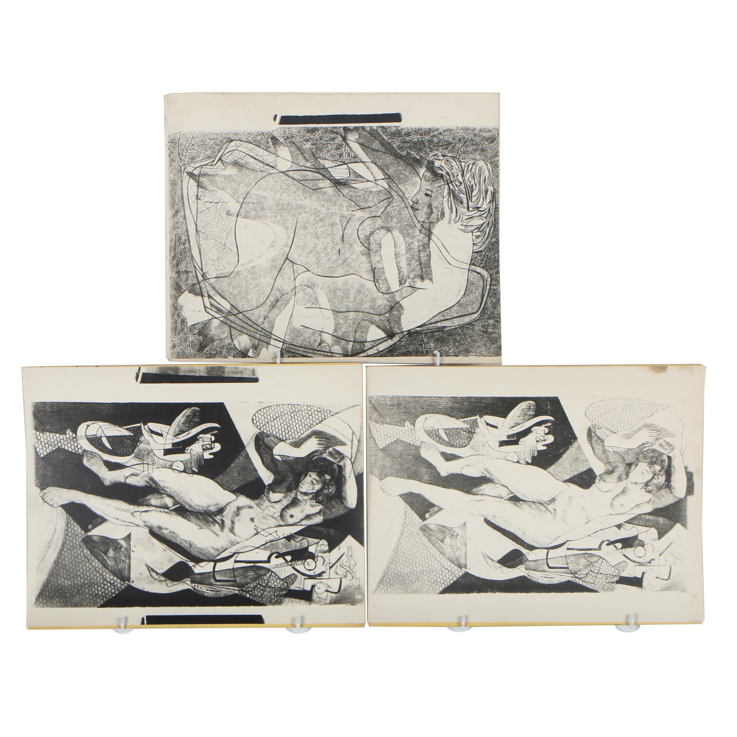 Cathal O'Toole Silver Gelatin  Photographs after Drawings