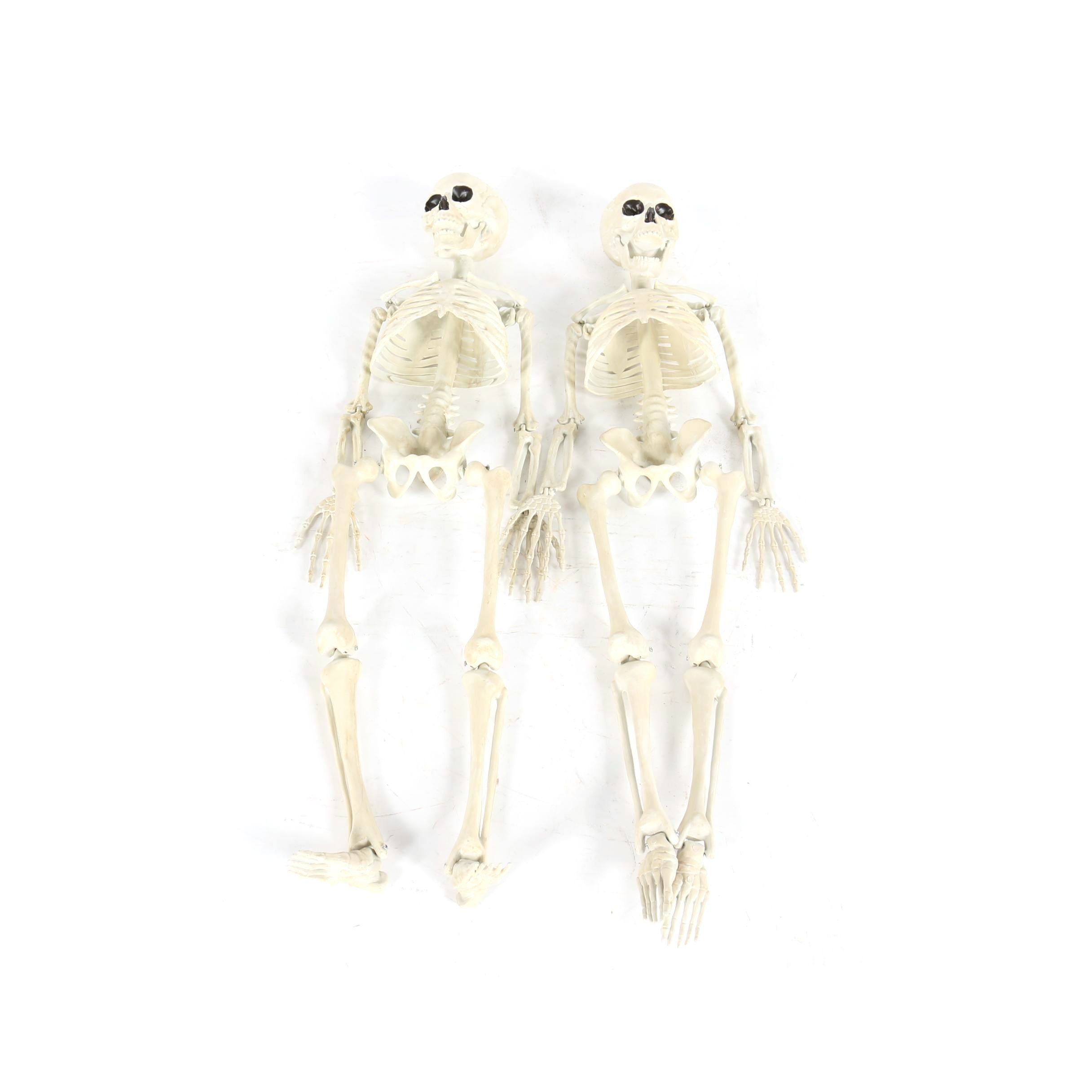 Halloween Decor and Accessories