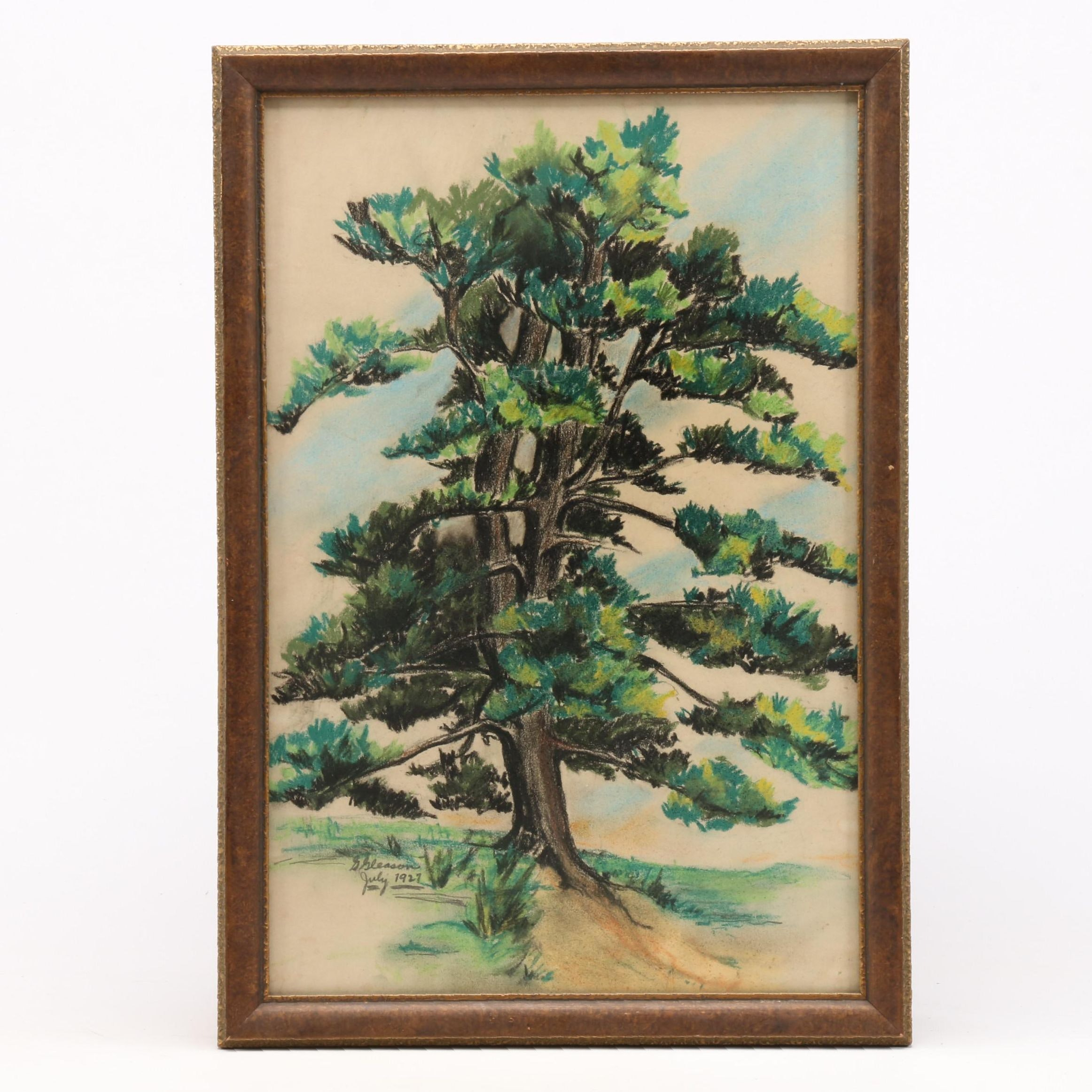 G. Gleason 1927 Pastel Drawing of Tree