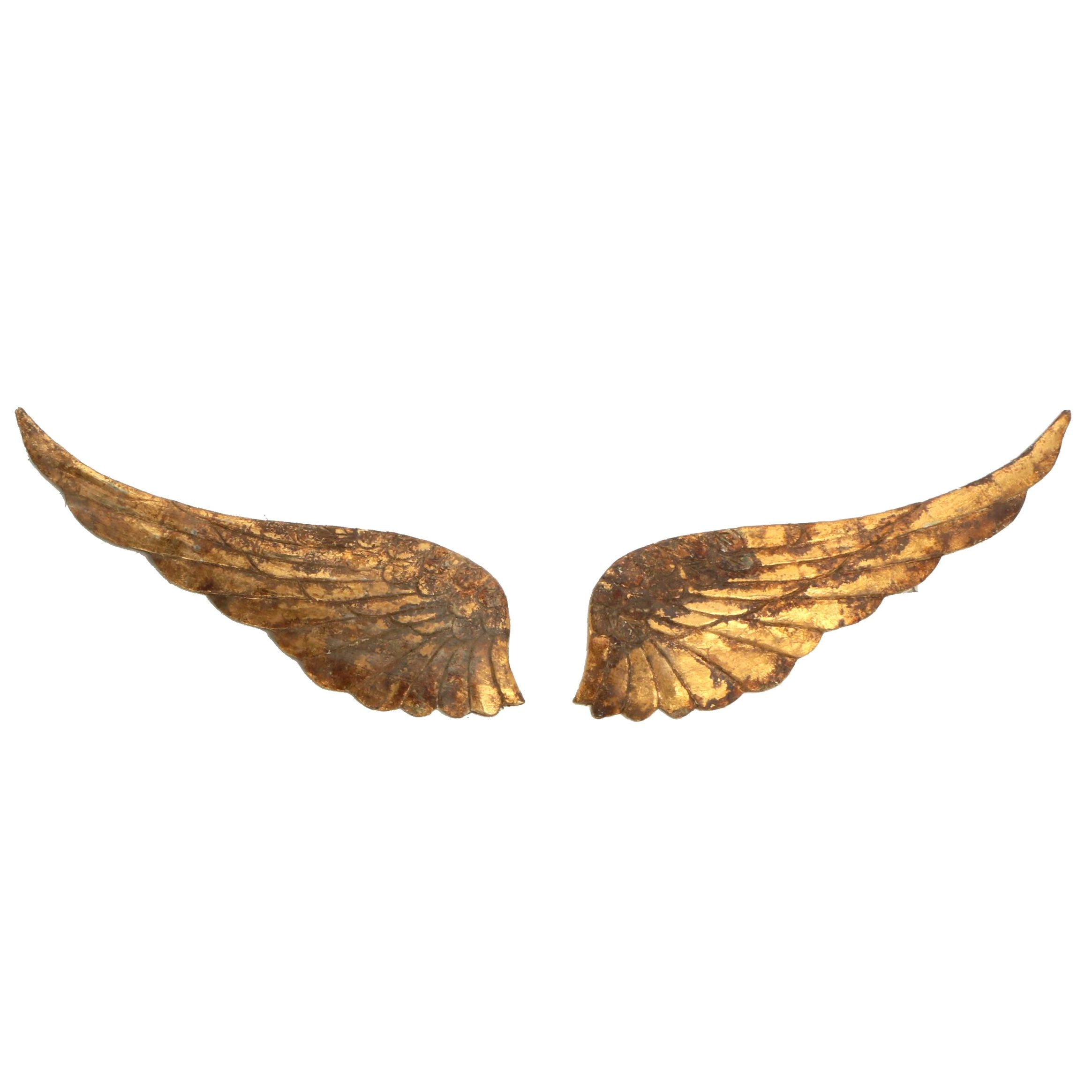 Carved Giltwood Wings, Contemporary