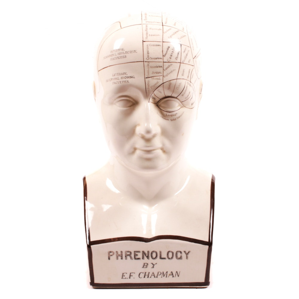 Ceramic Phrenology Bust After E.F. Chapman