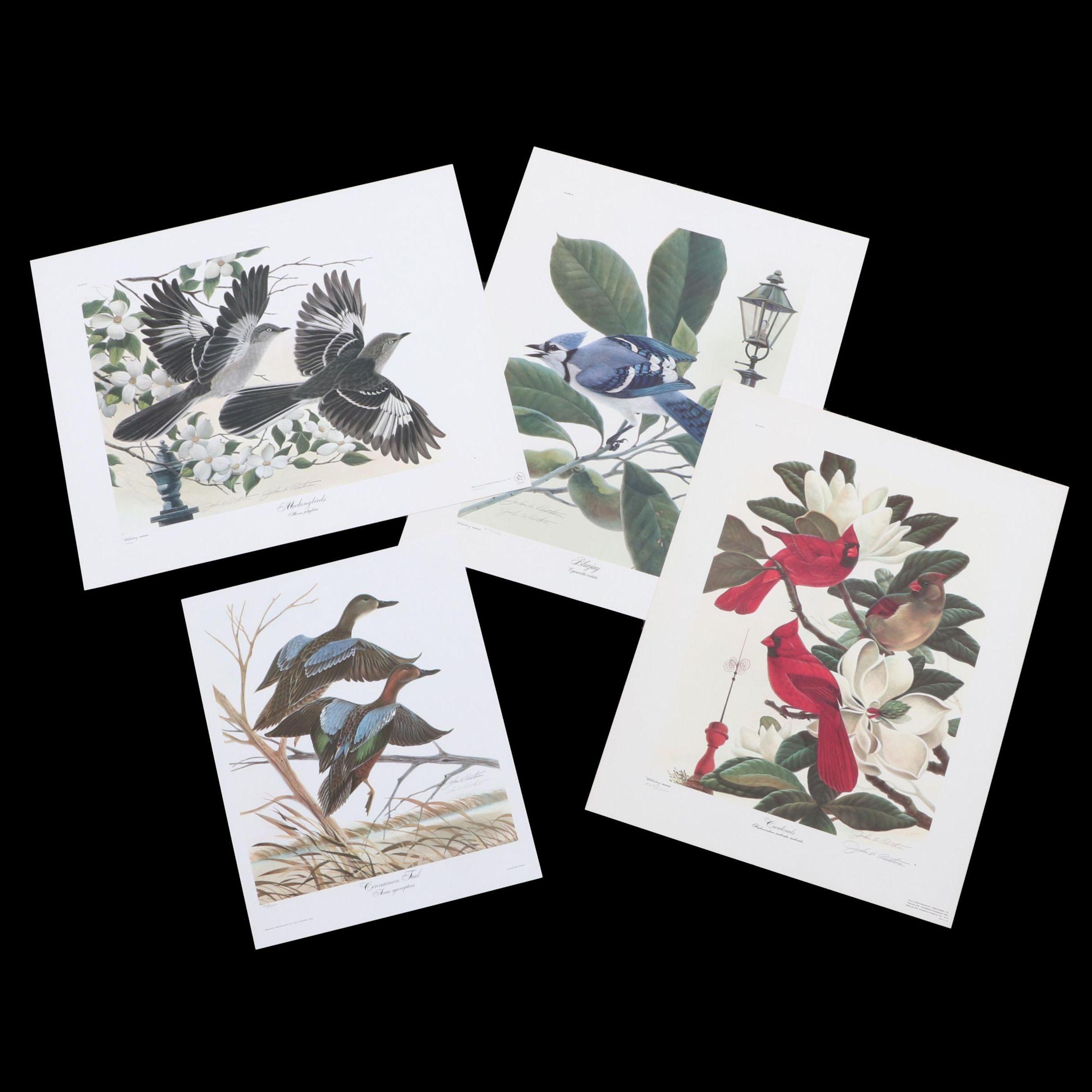 John Ruthven Offset Lithographs of Birds