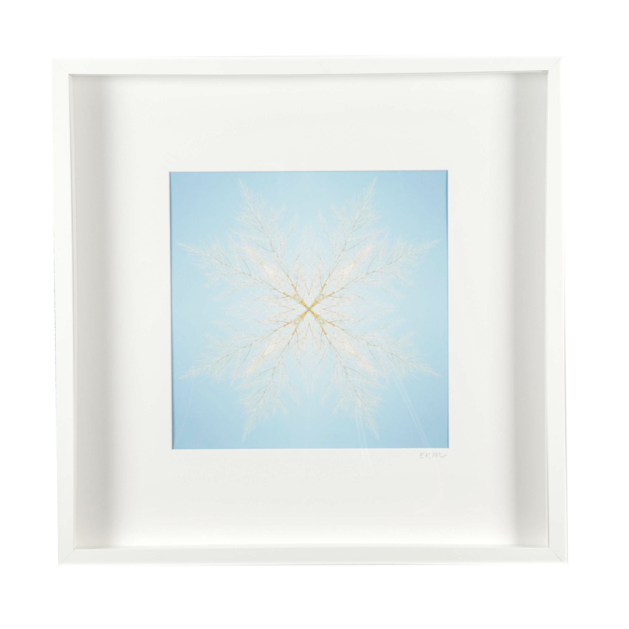 "Erin McCarthy Print ""Desert Snowflake"""