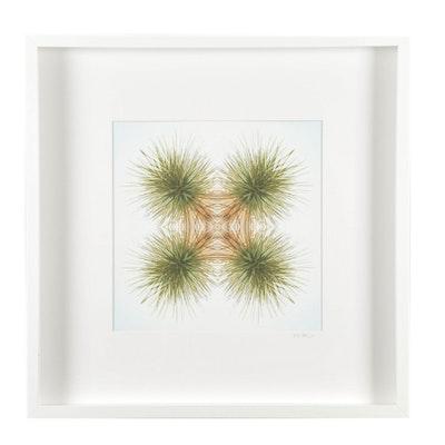 "Erin McCarthy Print ""Desert Plant"""