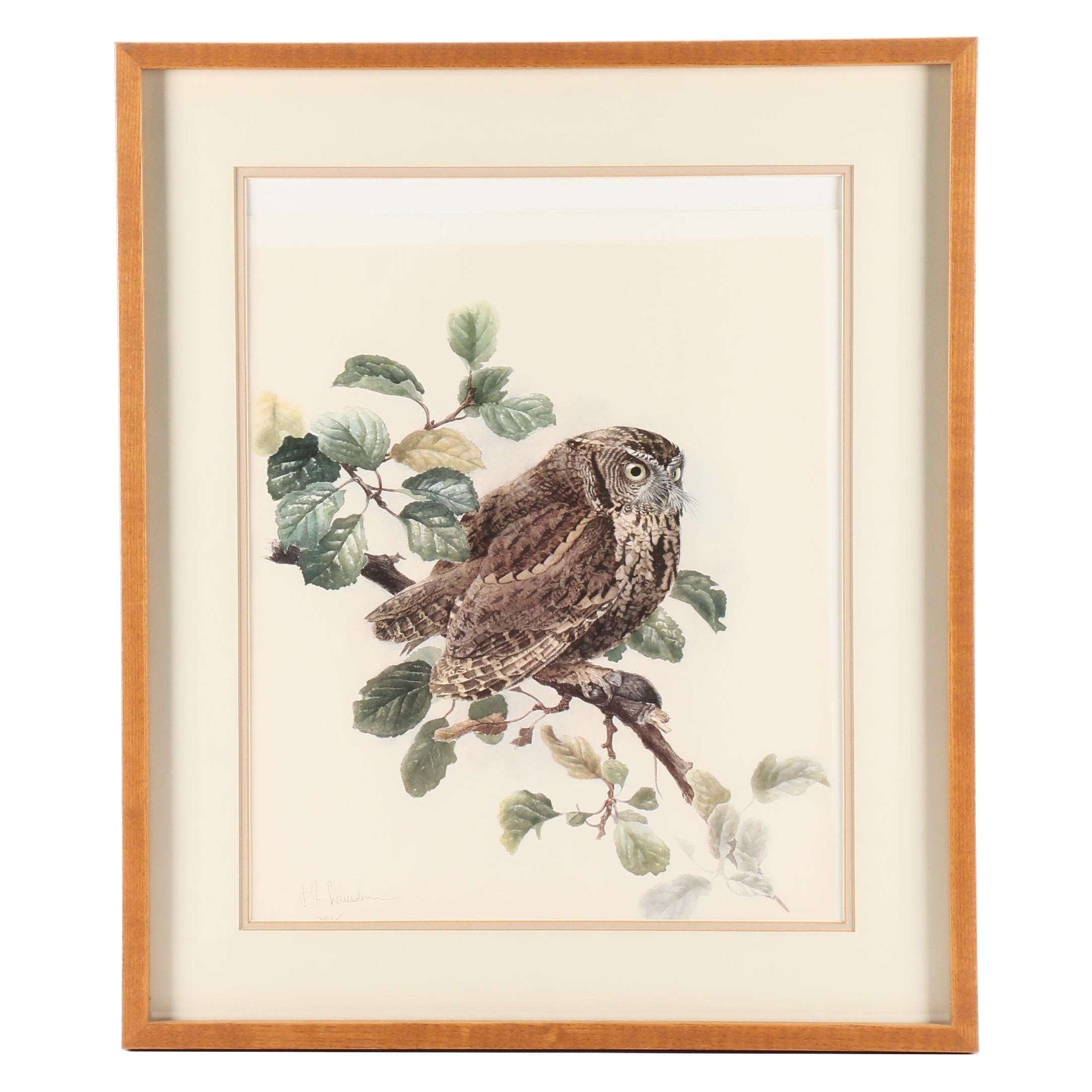James Fenwick Lansdowne Offset Lithograph of Perched Owl