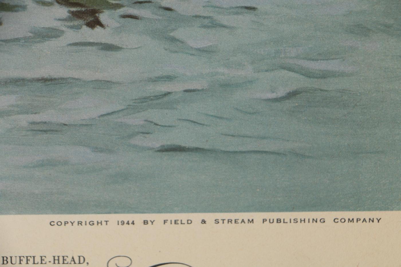 "1944 Offset Lithographs After Lynn Bogue Hunt ""Game Birds"