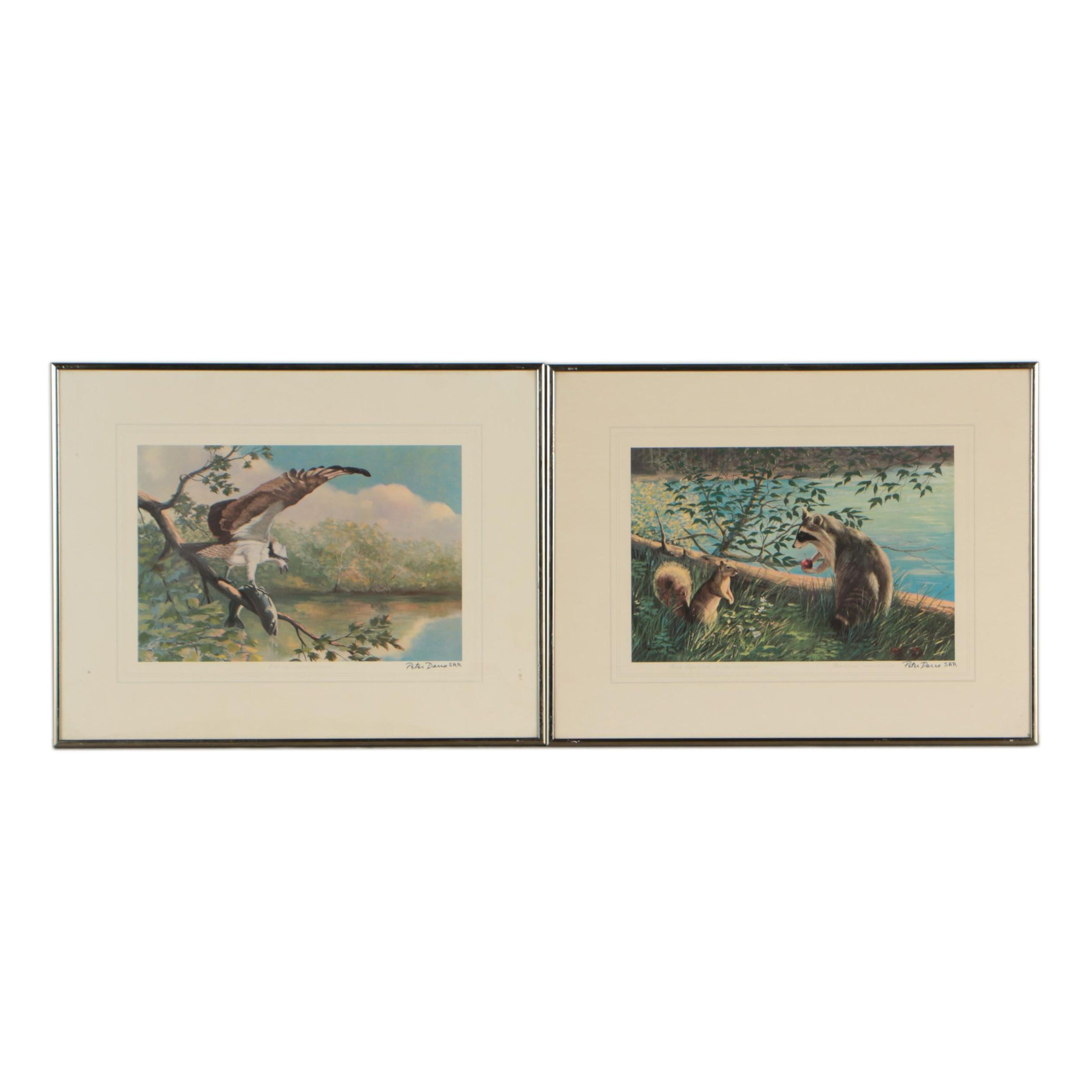 "Peter Darro Offset Lithographs ""Osprey"" and ""Red Squirrel and Raccoon"""