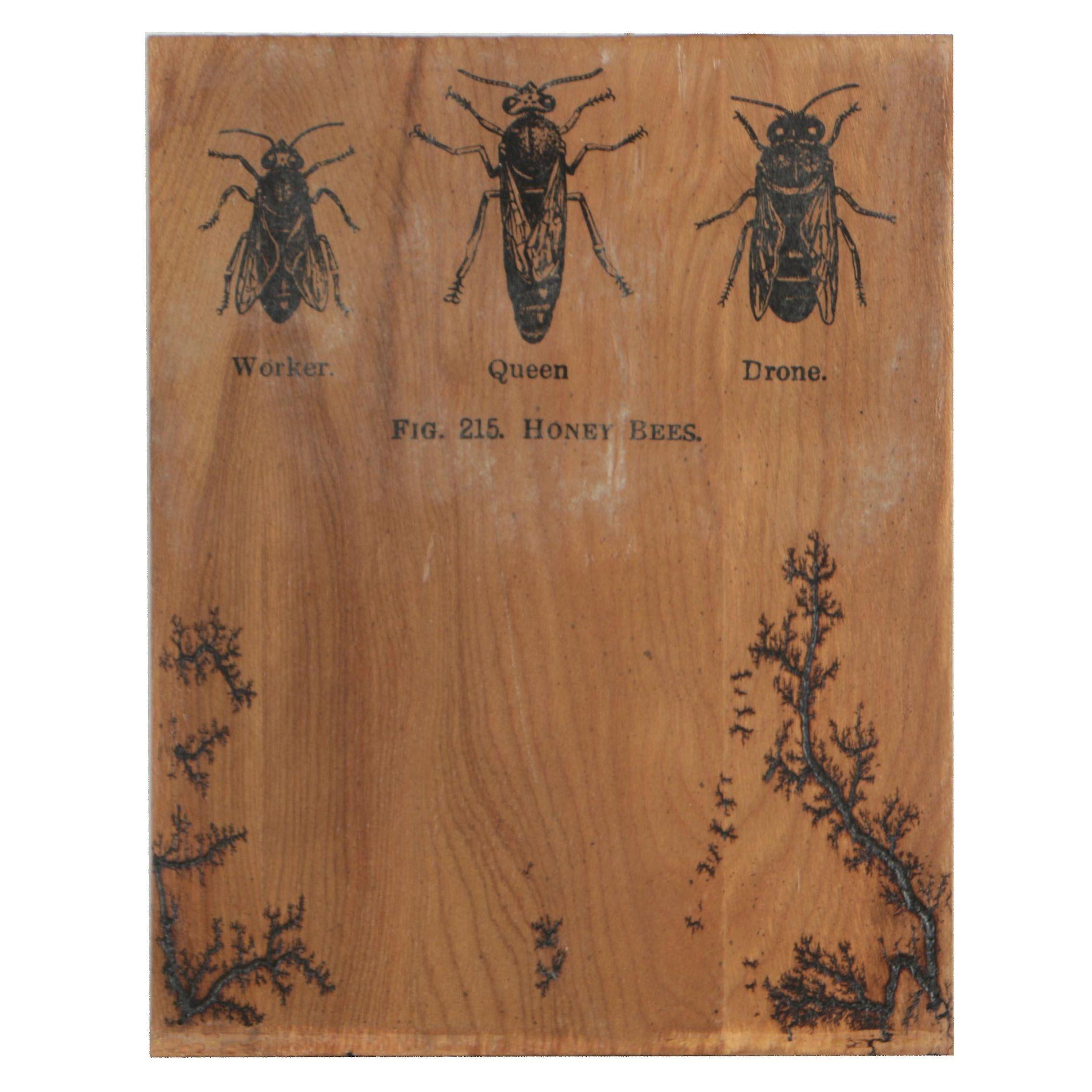"Matt Meyung Embellished Lichtenberg Figure ""Honey Bees"""