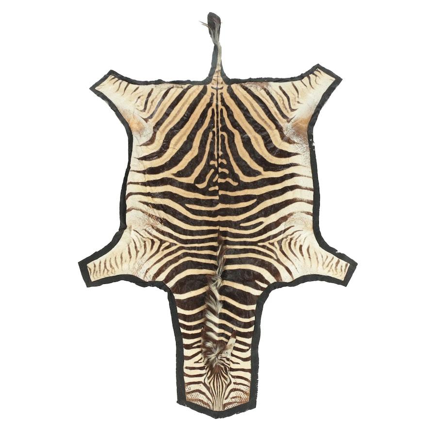 Plains Grant's Zebra Full Pelt Rug with Felt Backing
