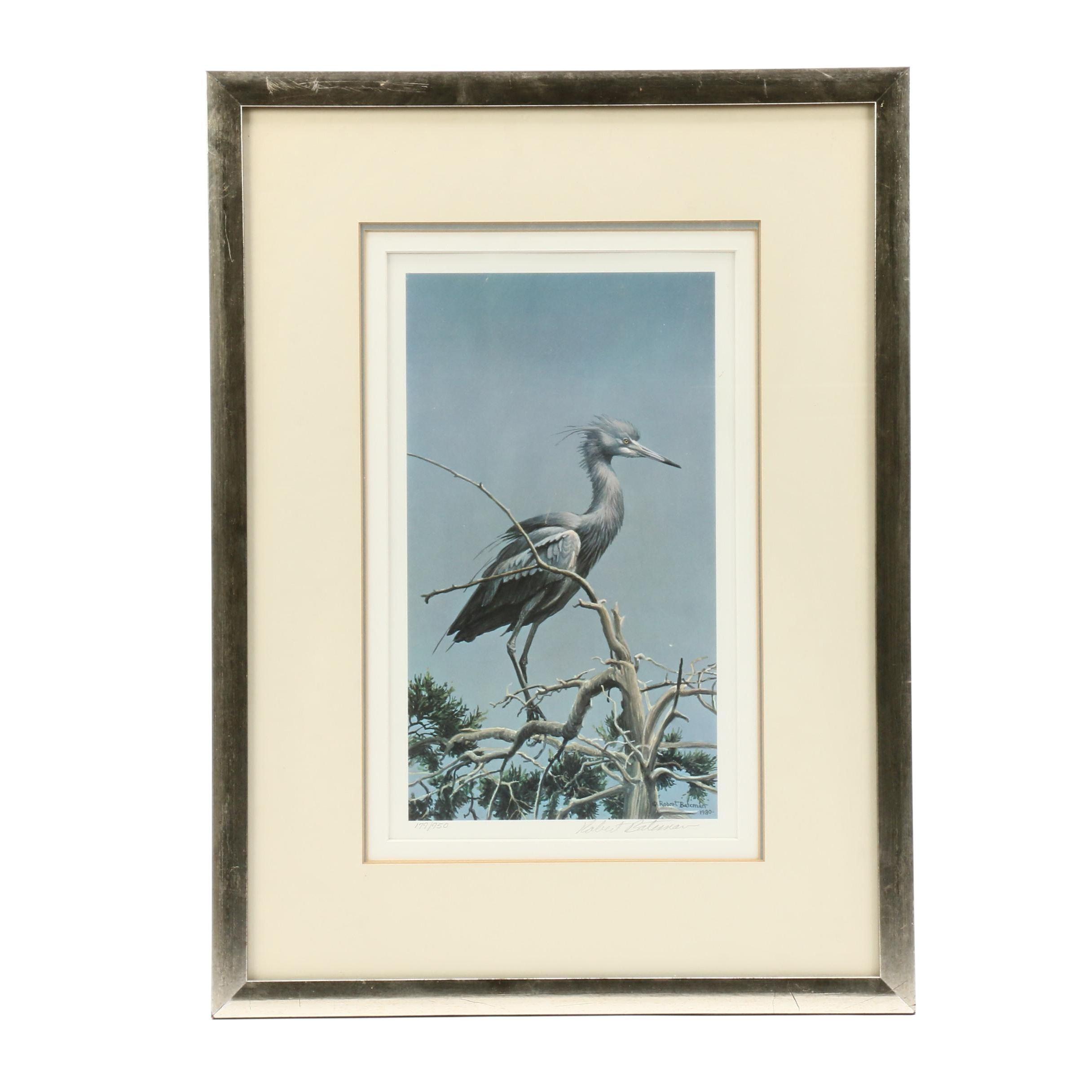 """Robert Bateman Offset Lithograph """"Little Blue Heron"""""""