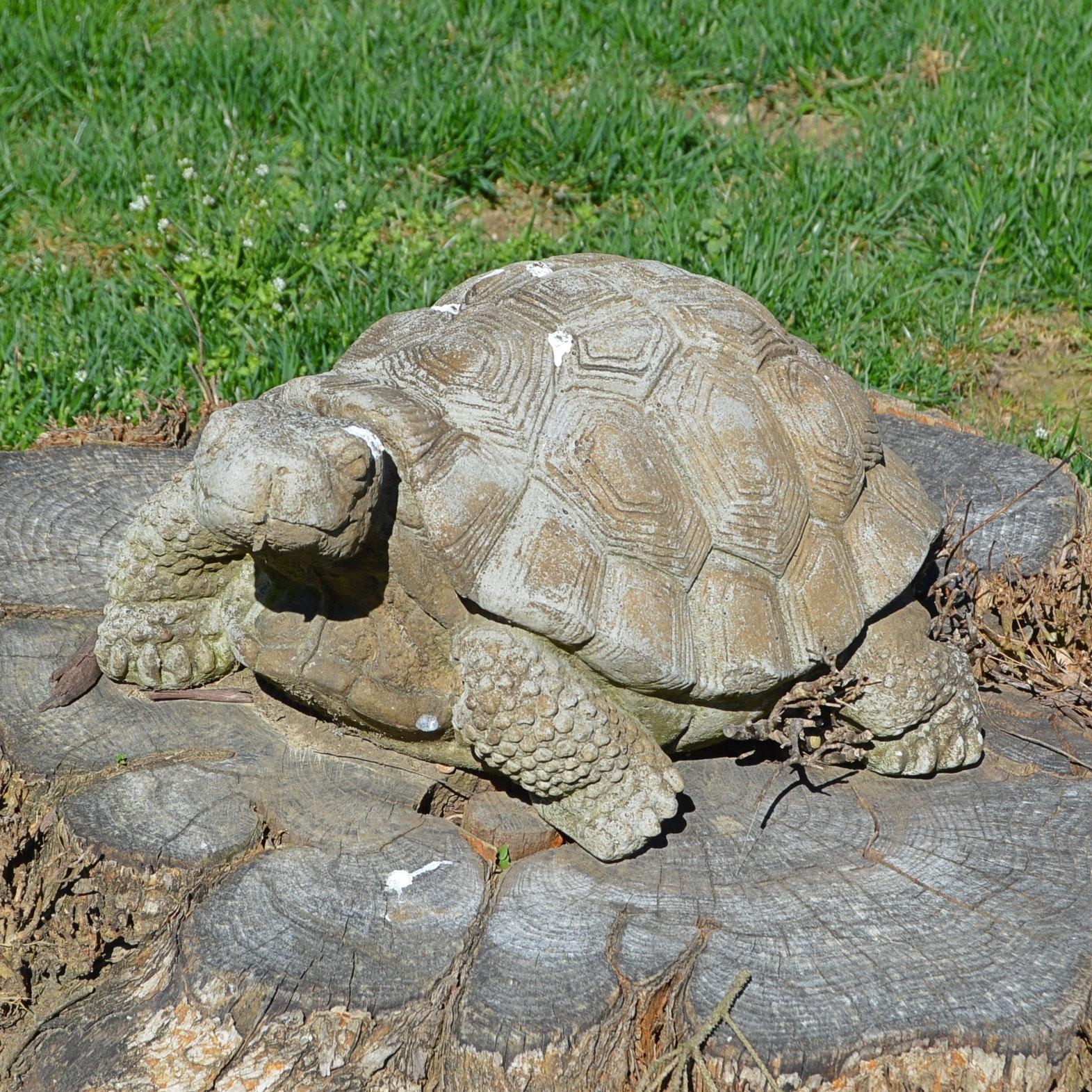 Concrete Garden Tortoise