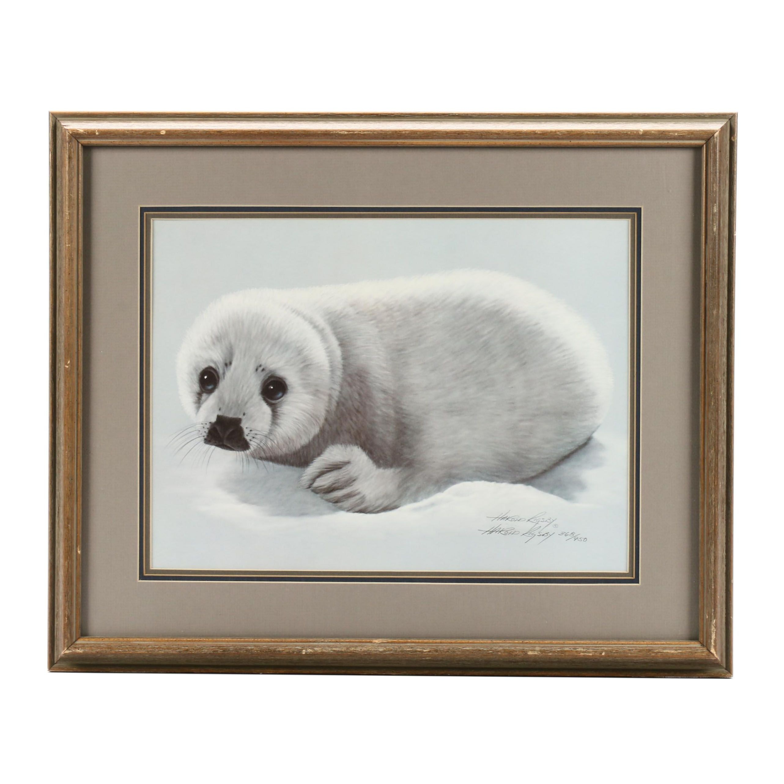 Harold Rigsby Offset Lithograph of Young Seal