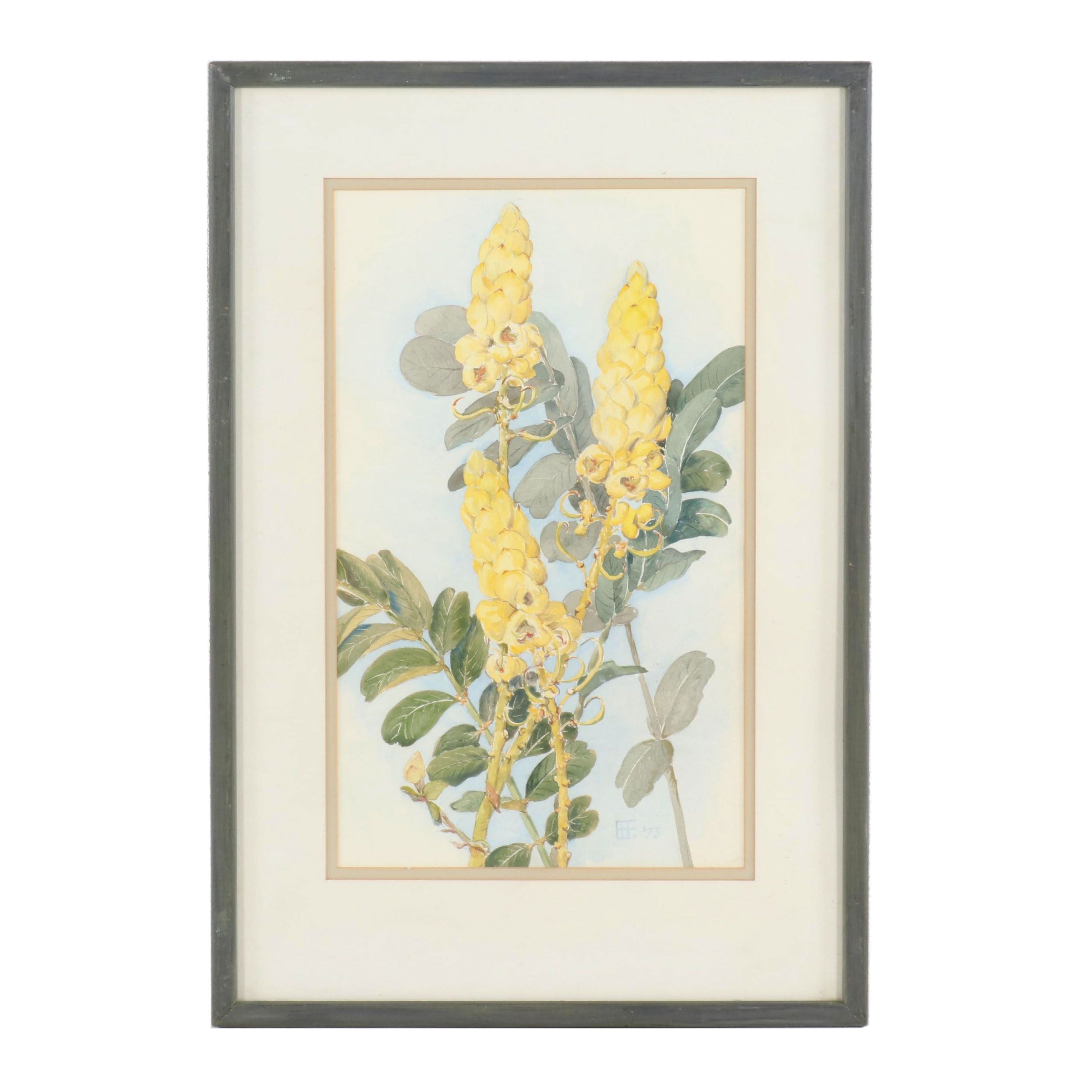 """1973 Watercolor Painting """"Candle Bush"""""""