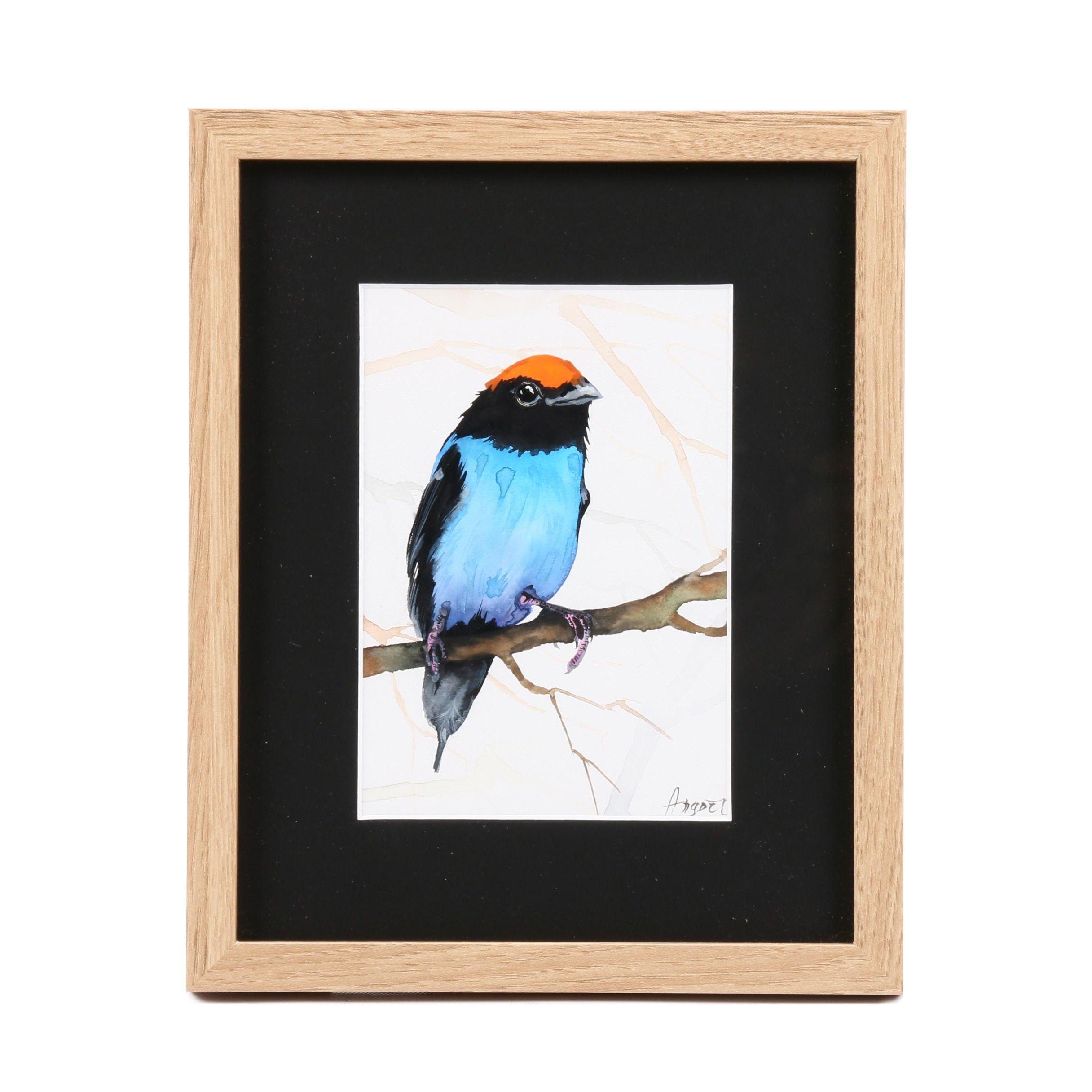 Angor Watercolor Painting of Bird