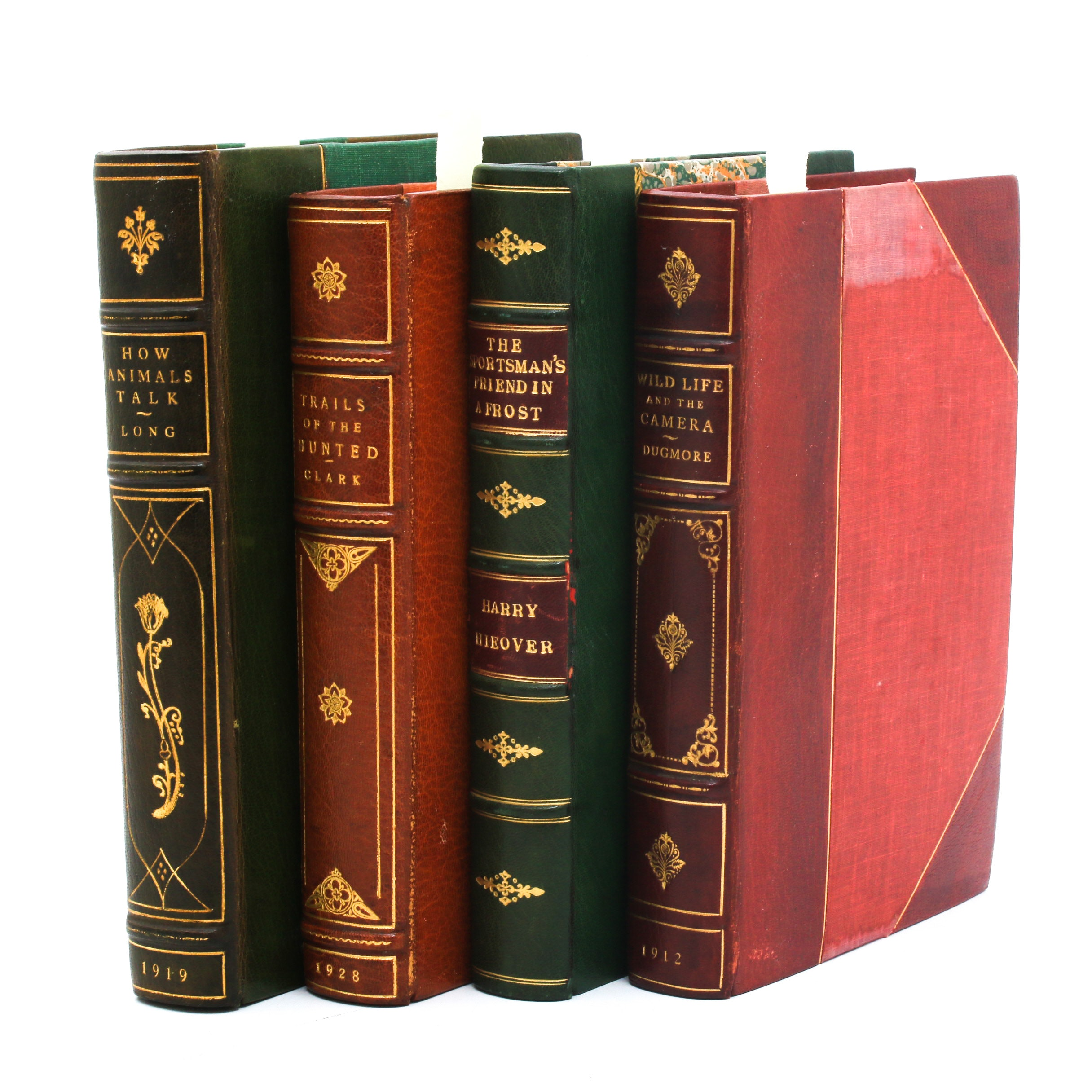 Vintage Wildlife and Nature Book Collection