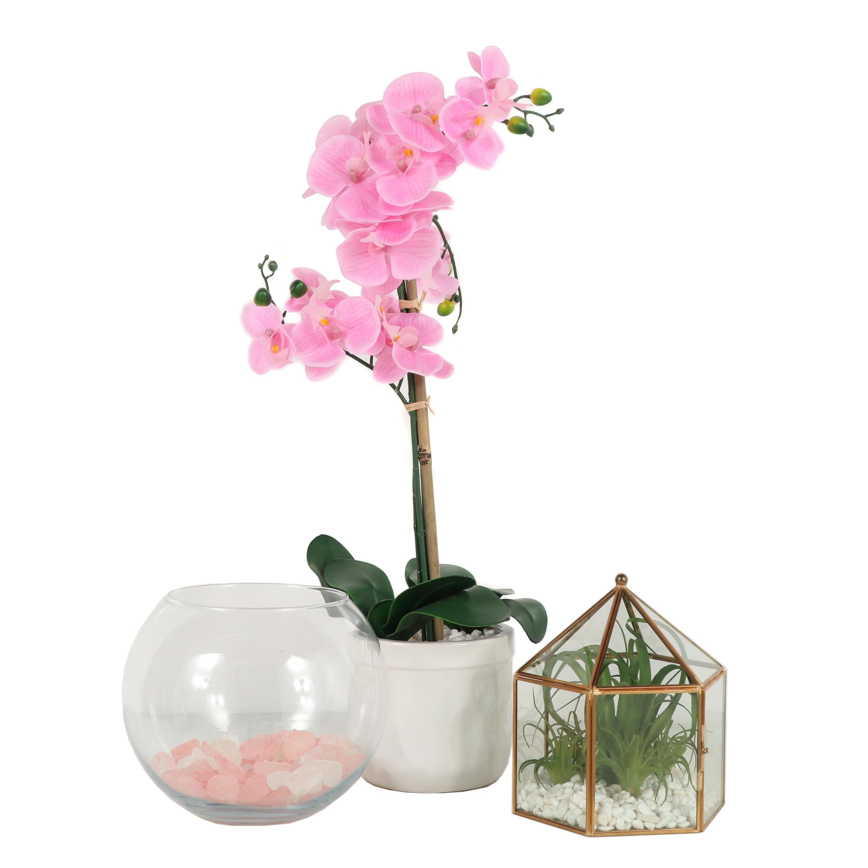 Decorative Terrariums and Artificial Plant with Wall Decor