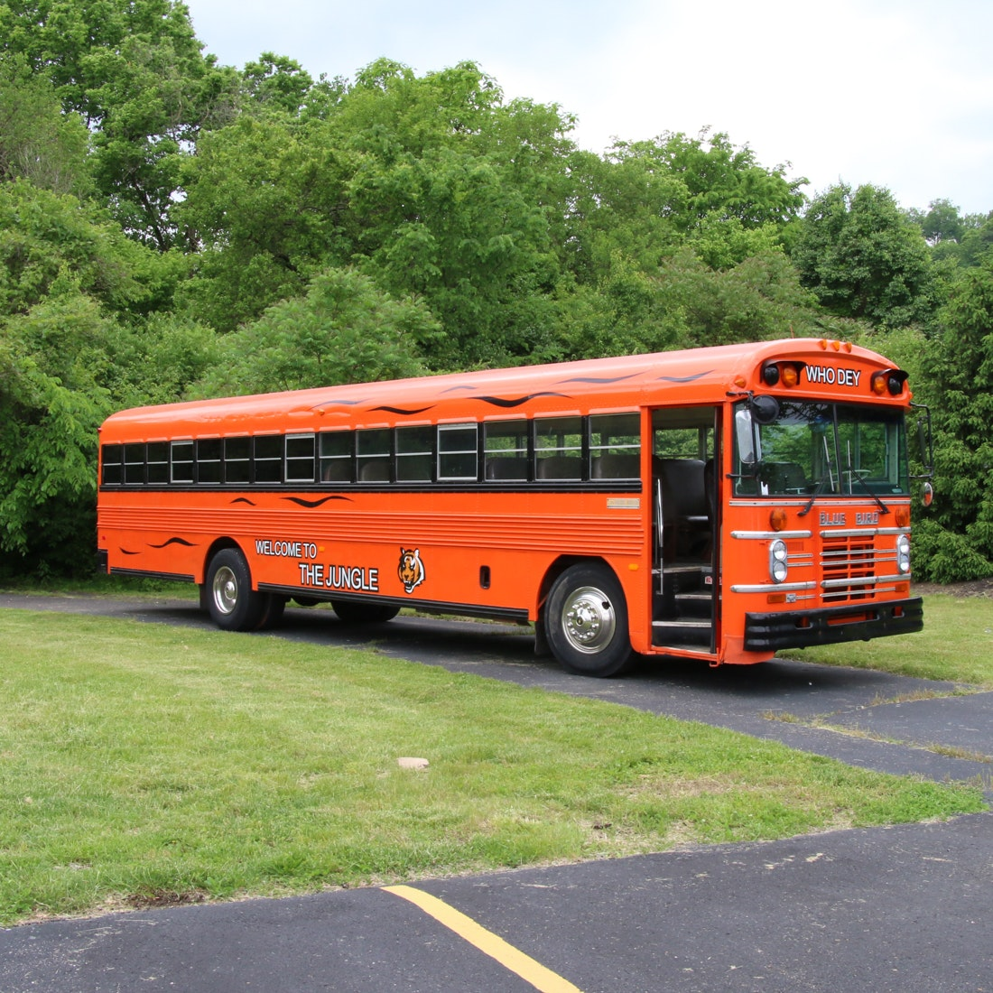 "1987 Blue Bird ""All American"" Bengals Who Dey Bus"