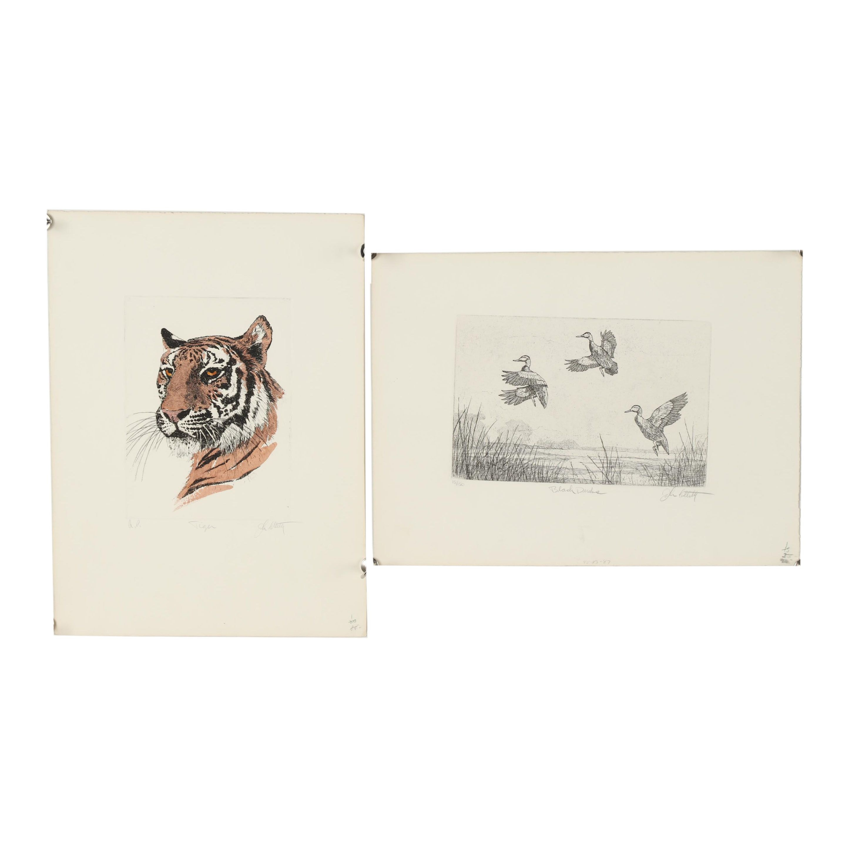 """John Collette Etchings """"Tiger"""" and """"Black Ducks"""""""
