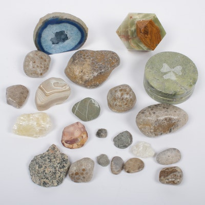 Fossils and Minerals Including Geode, Green Onyx, and More