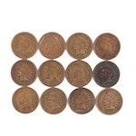 Twelve Indian Head Cents