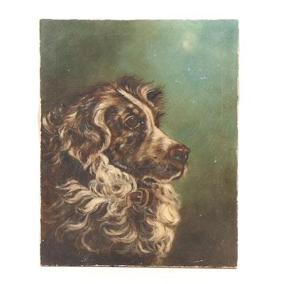 Border Collie Portrait Oil Painting