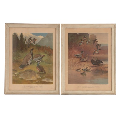 Offset Lithographs after Lynn Bogue Hunt of Game Fowl, 1944